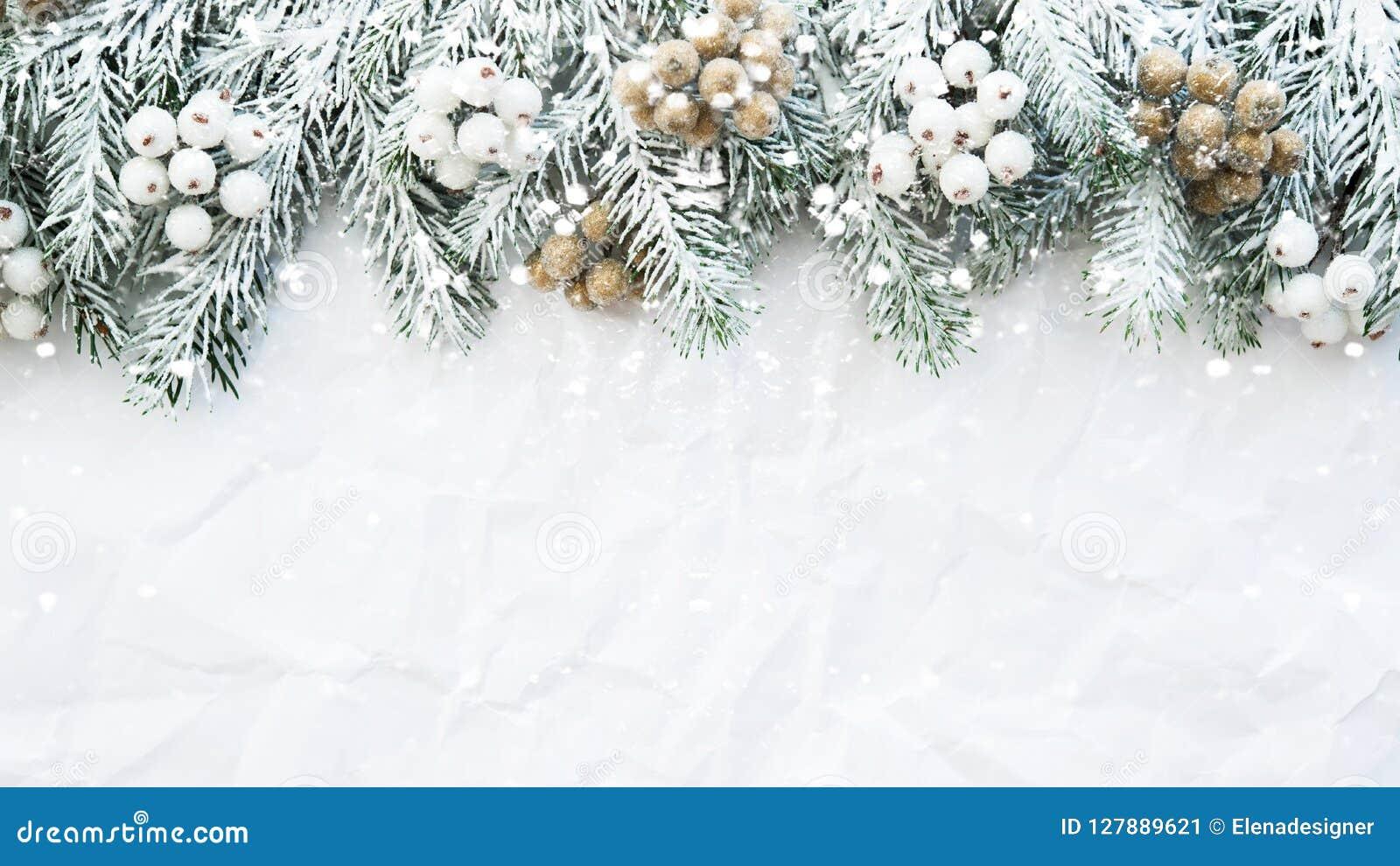 与xmas树的圣诞节背景在白色弄皱了背景 圣诞快乐贺卡,框架,横幅