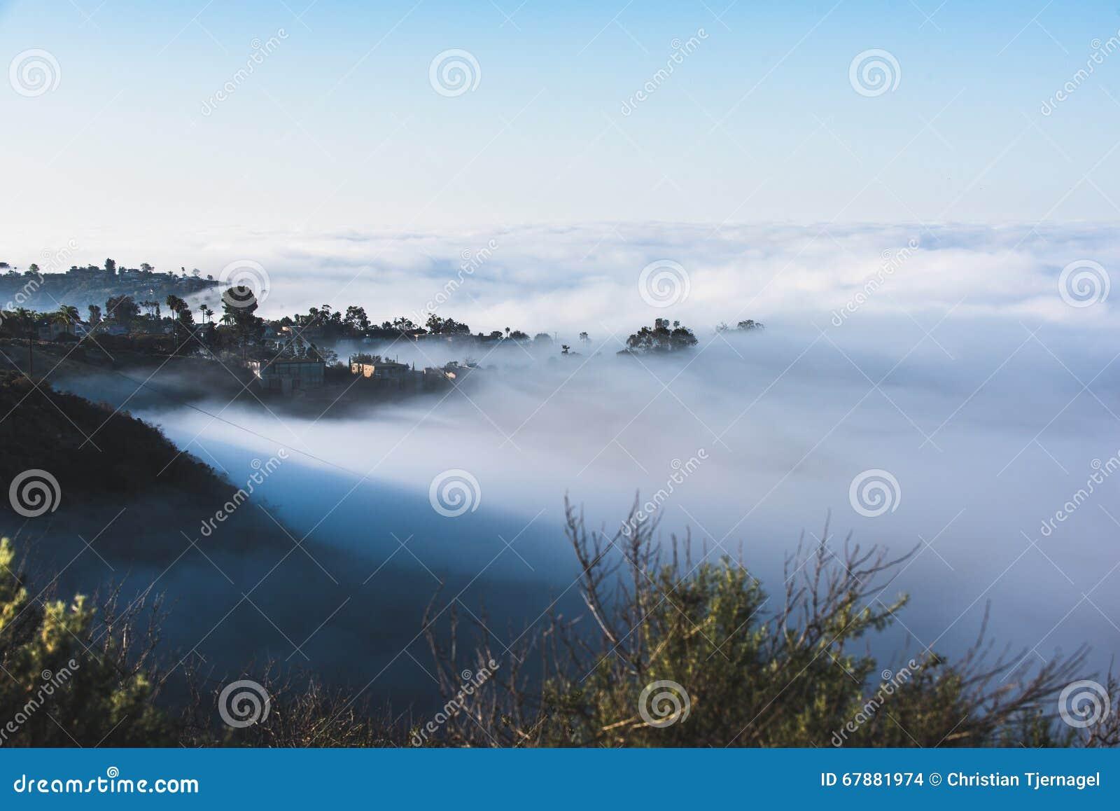 世界有雾的小山的上面