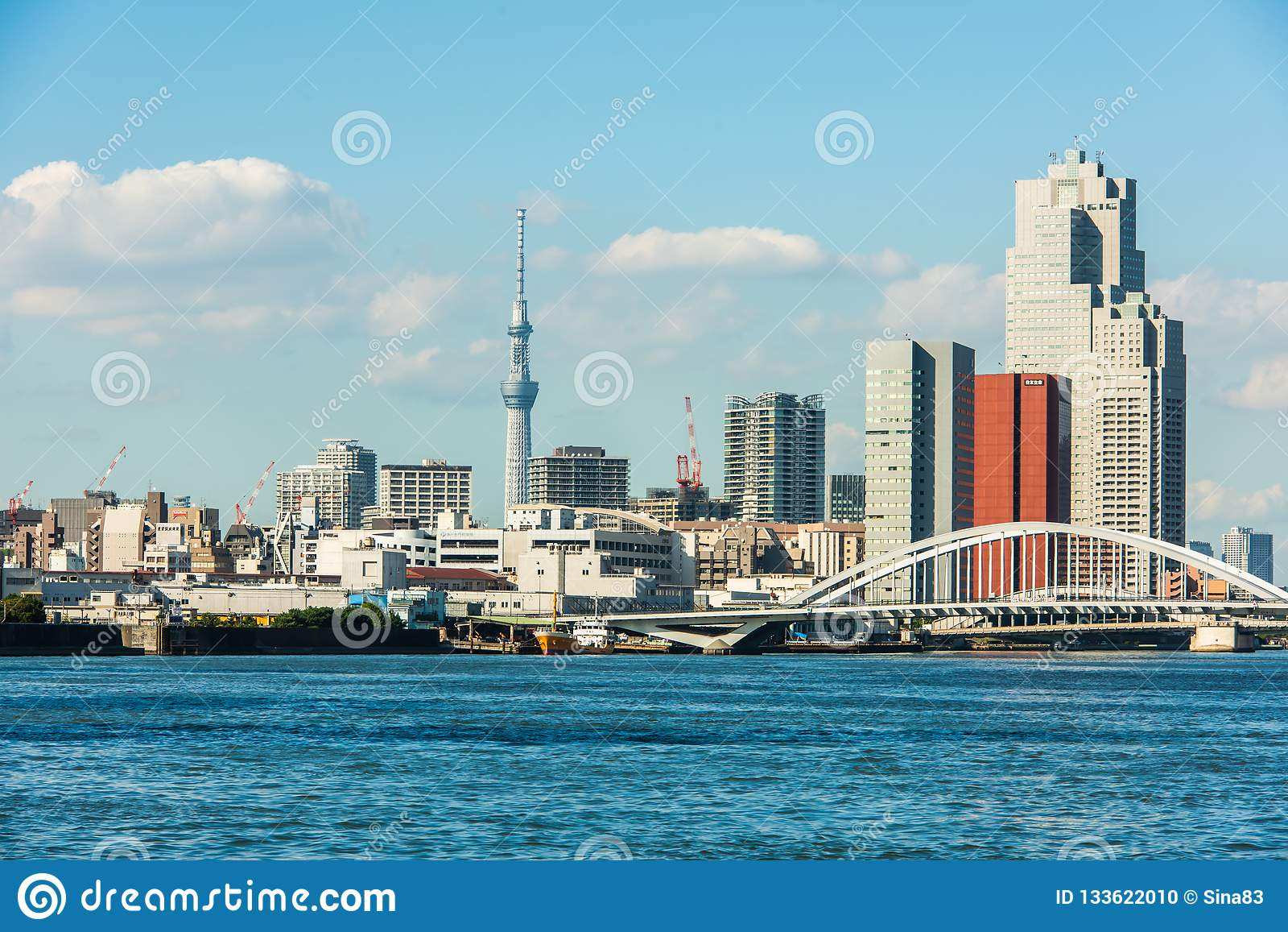 东京港口天空树和桥梁