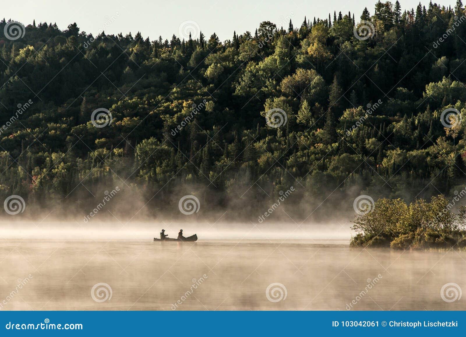 两个在水的河独木舟独木舟有雾的水日出雾金黄小时Canada安大略湖在阿尔根金族国家公园