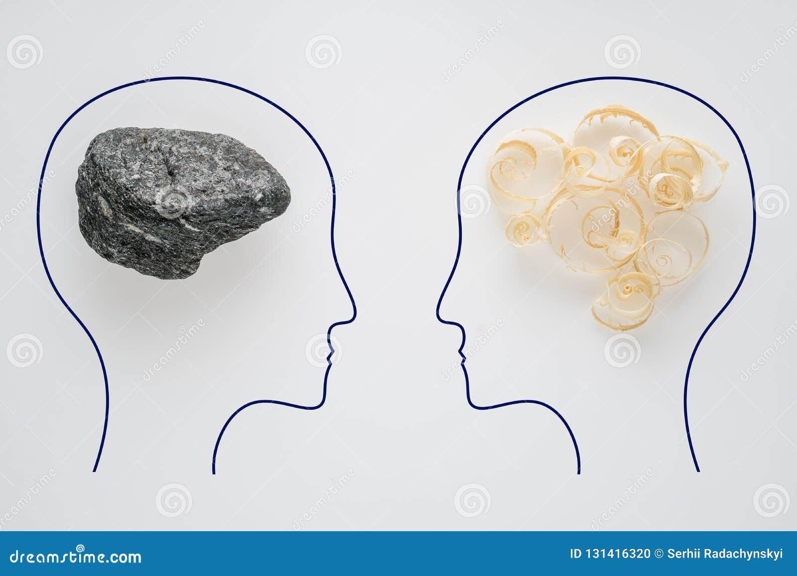 两人头有锯木屑脑子形状和石脑子形状的 有另外认为的两个人 合理和不合理