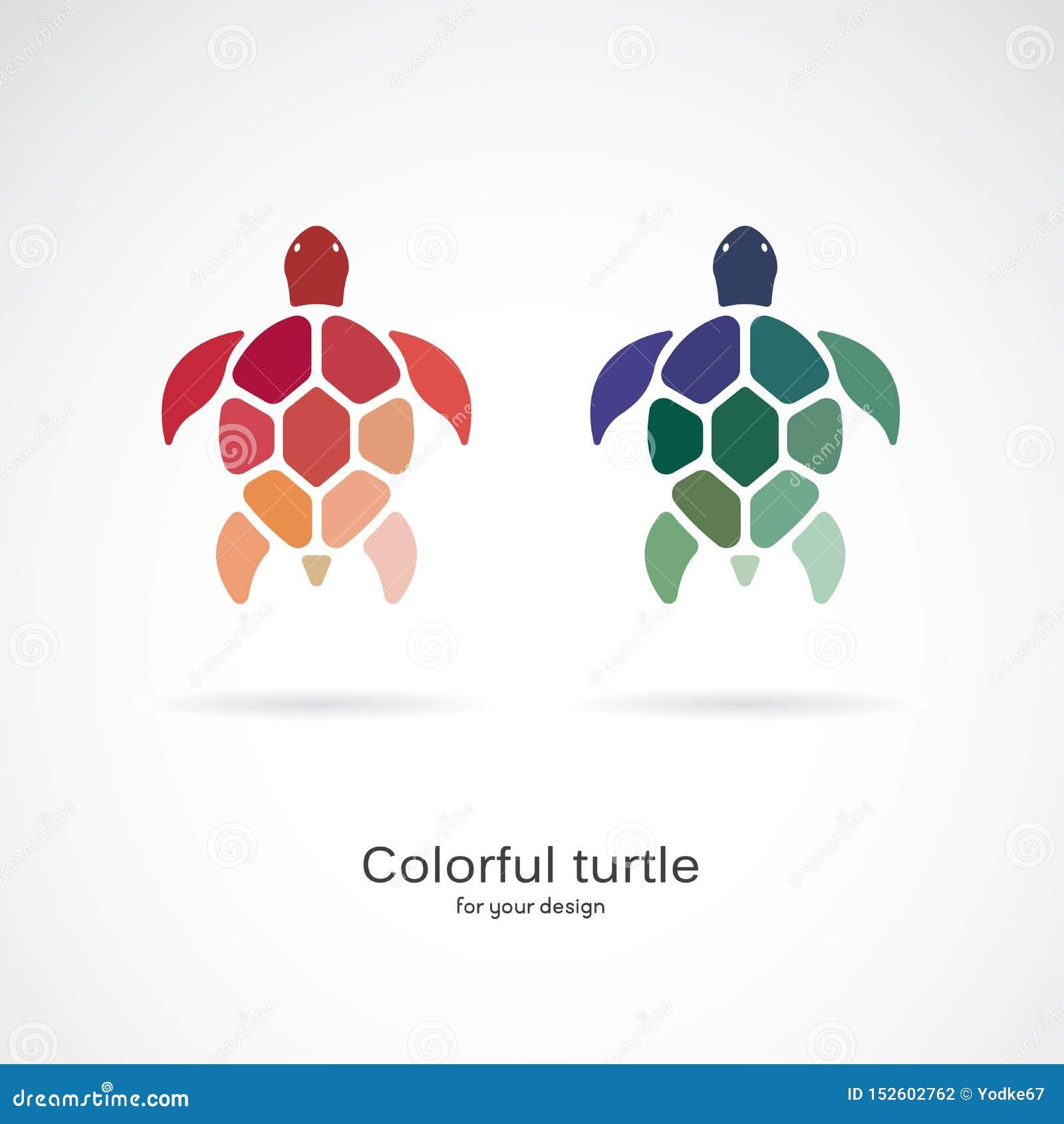 两只五颜六色的乌龟传染媒介在白色背景的 E 水下的动物 乌龟象或商标 层状的容易编辑可能