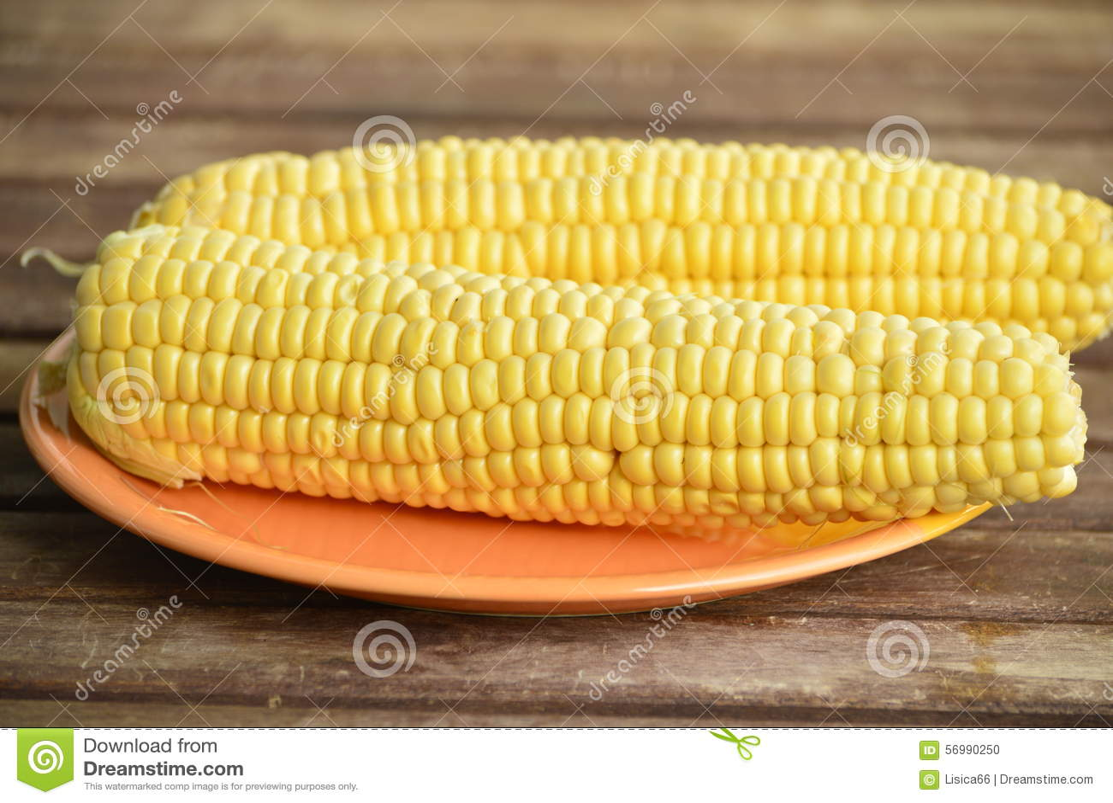 两说谎在板材的玉米穗.图片