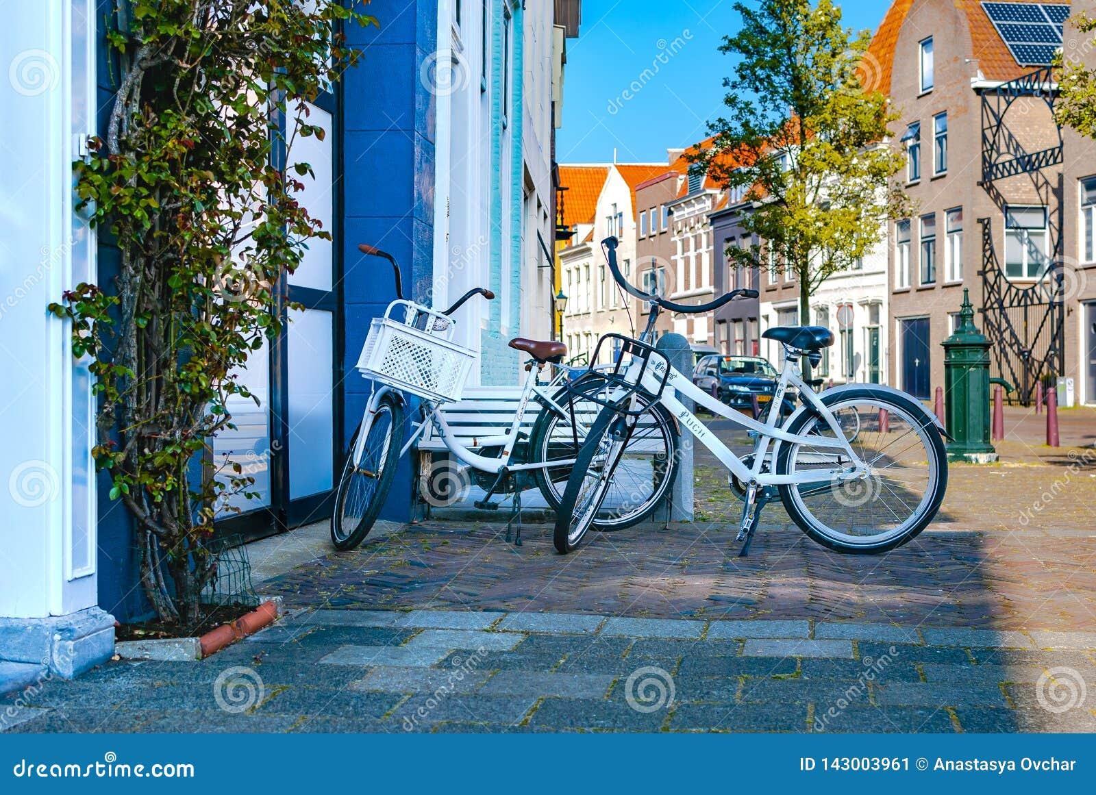 两辆白色浪漫自行车站立在彼此附近和停放在街道附近 室外的活动 背景概念框架沙子贝壳夏天