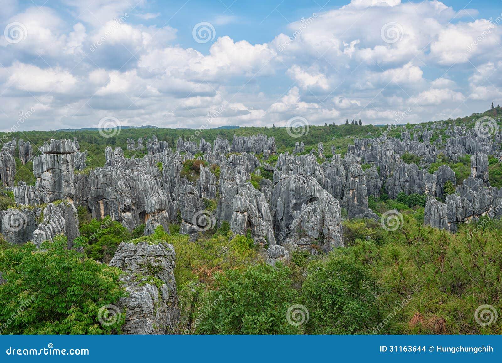 中国-石森林国家公园(联合国科教文组织世界遗产名录)的自然风景.图片