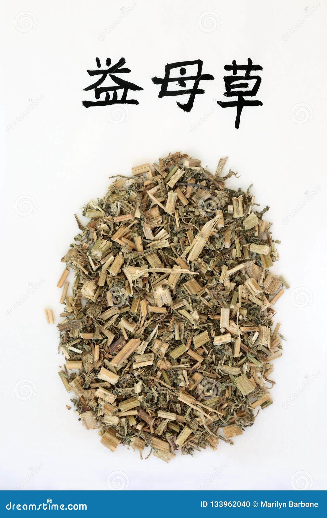 中国益母草草本