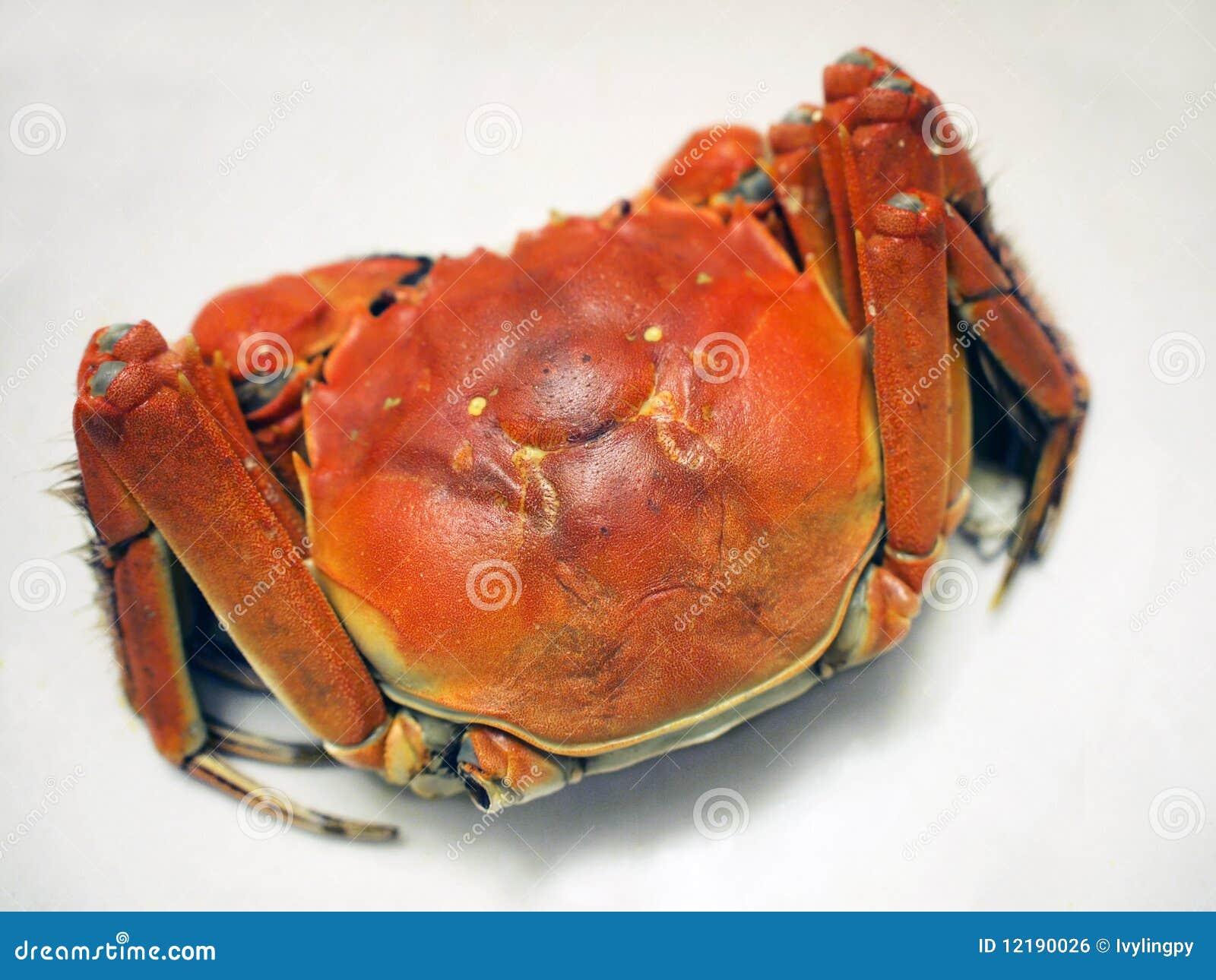 中国螃蟹湖