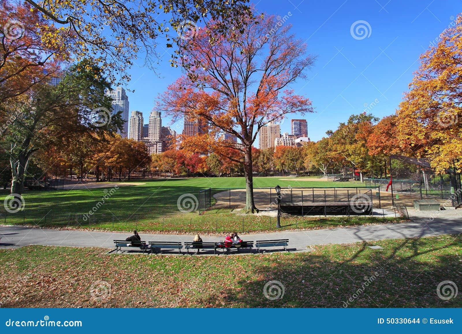 中央公園晴天,紐約圖片