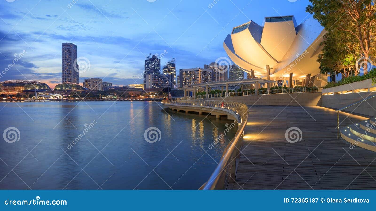 中央新加坡看法