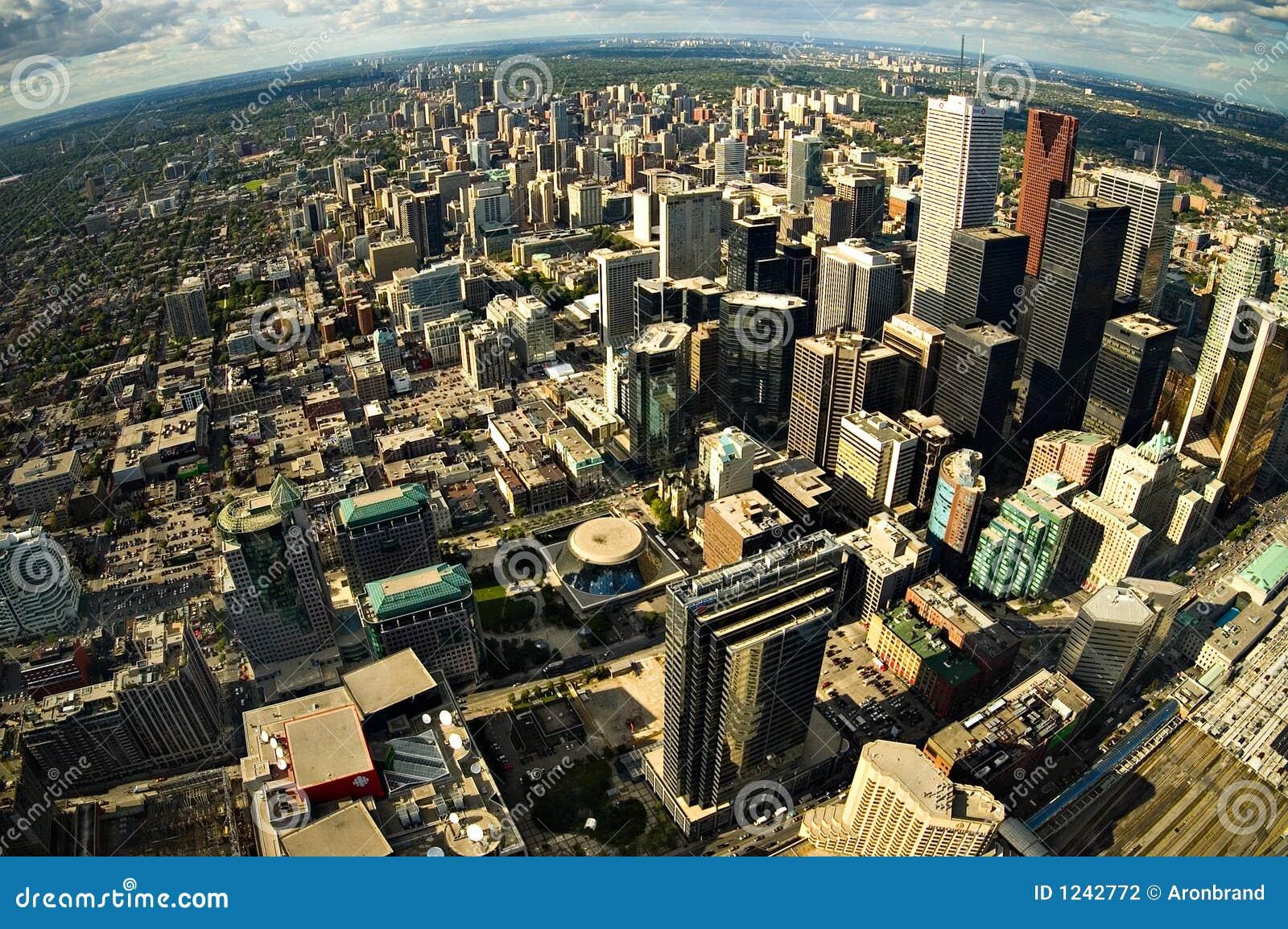 中心城市多伦多