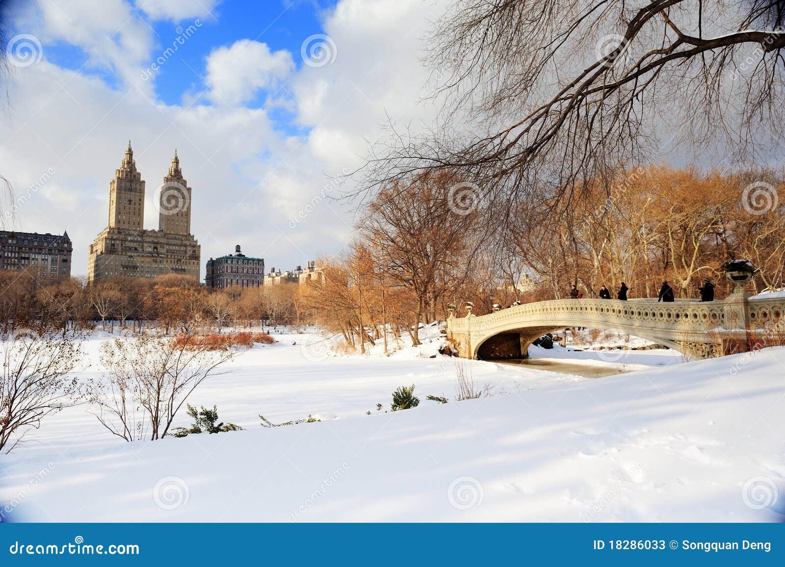 中心城市曼哈顿新的全景公园约克