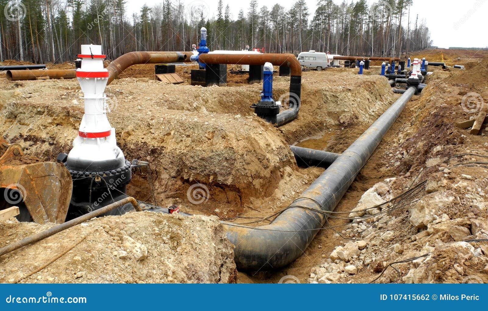 中心输油管精炼厂西方的西伯利亚