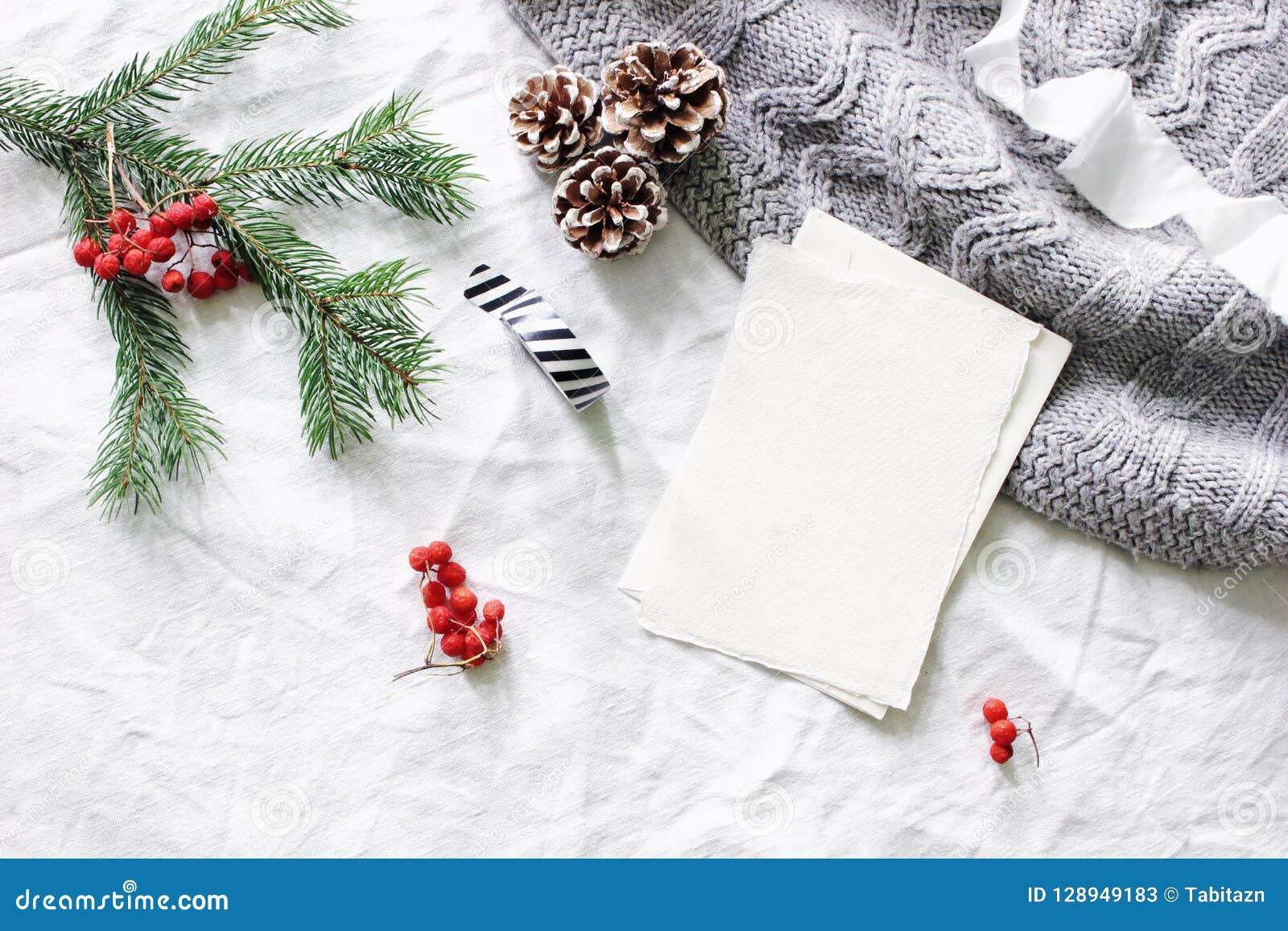 中看不中用的物品蓝色圣诞节构成玻璃 空白的贺卡,愿望大模型场面 圣诞树分支,红色花楸浆果,杉木