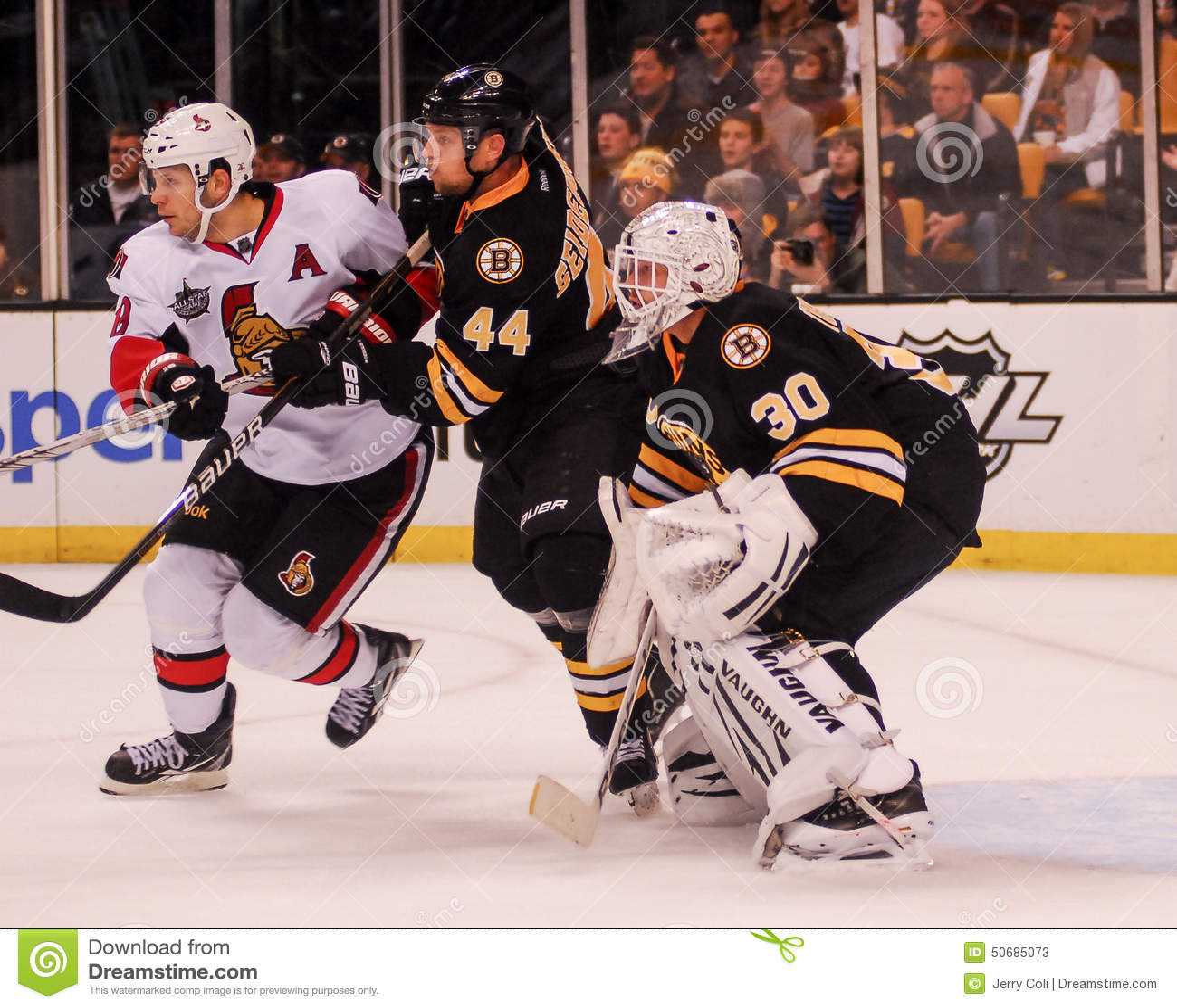 Download 丹尼斯赛登贝格和提姆・汤玛士,波士顿熊 编辑类库存照片. 图片 包括有 队友, 挫伤, 防御, 曲棍球, 球员 - 50685073