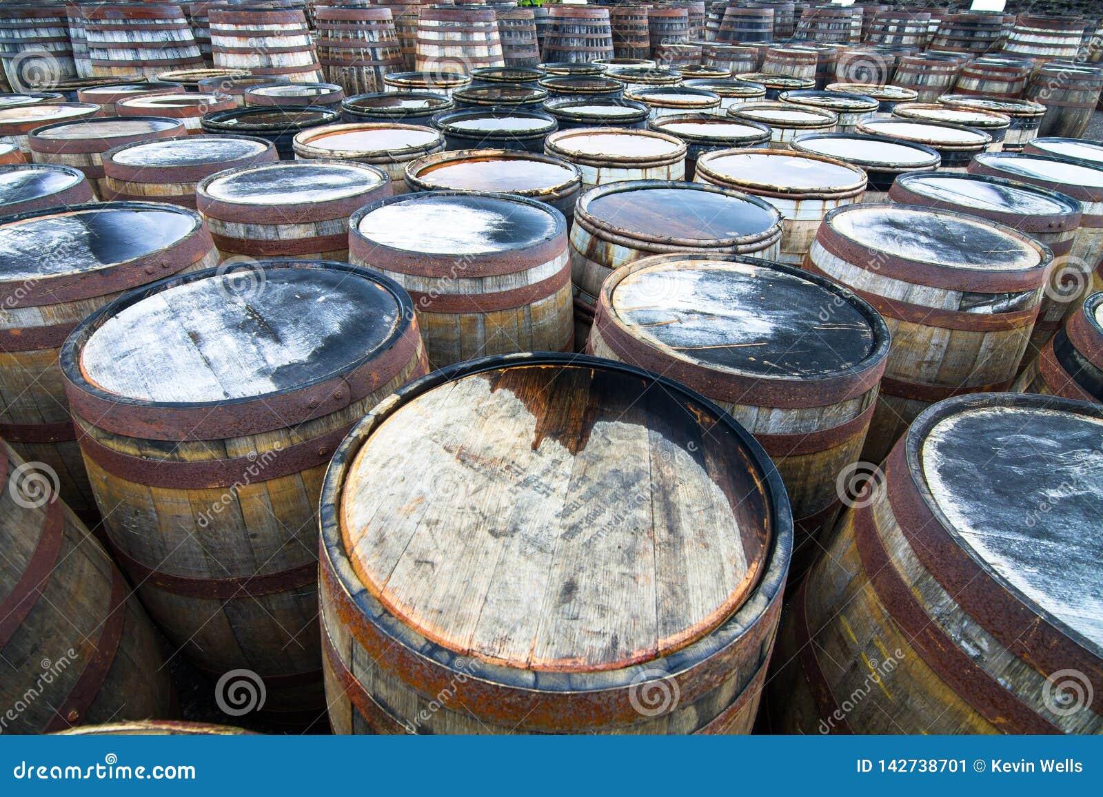 为变老威士忌酒使用的数百木桶