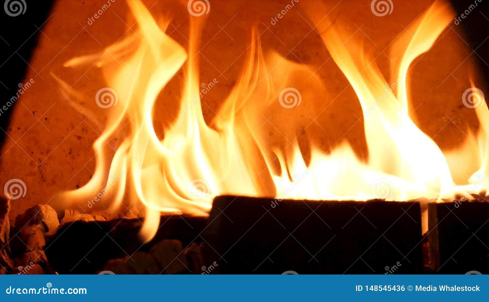 为在古板的烤箱的灼烧的火关闭烘烤的食物的 ?? 传统烤箱、灼烧的森林和火焰