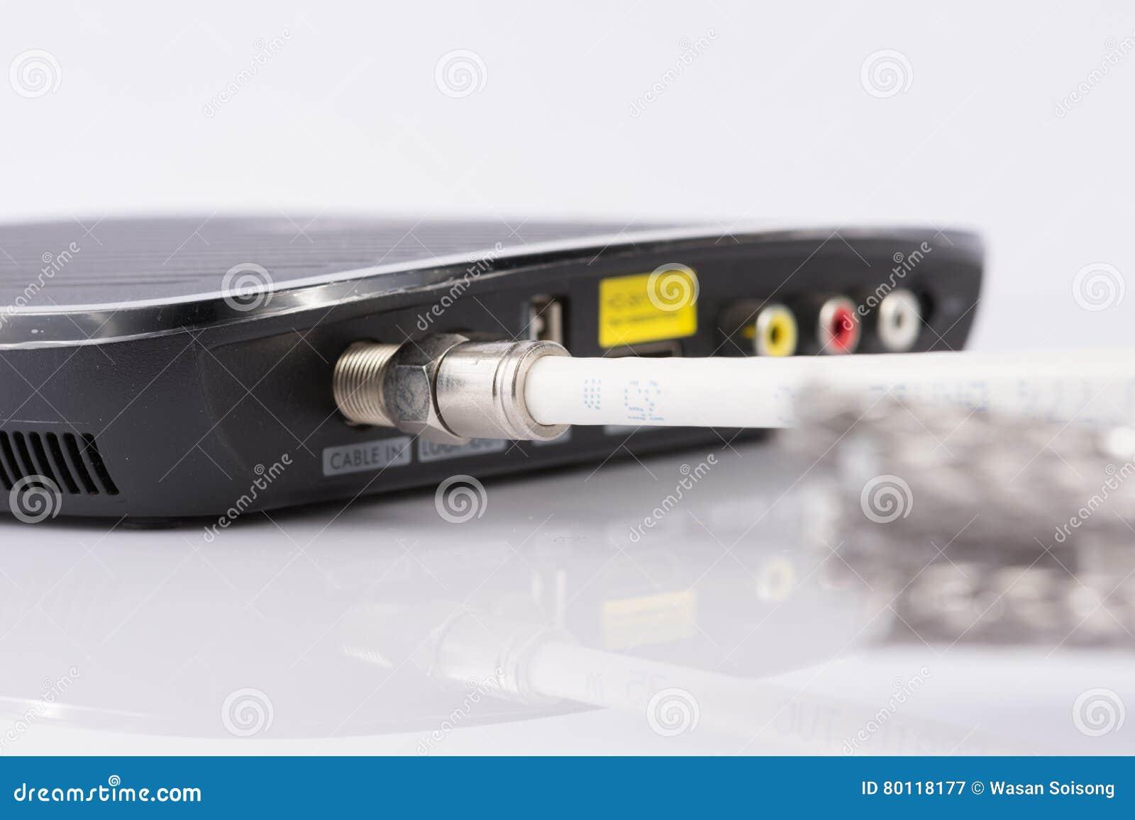 为数字式电视,有线电视,在白色的数据缆绳缚住