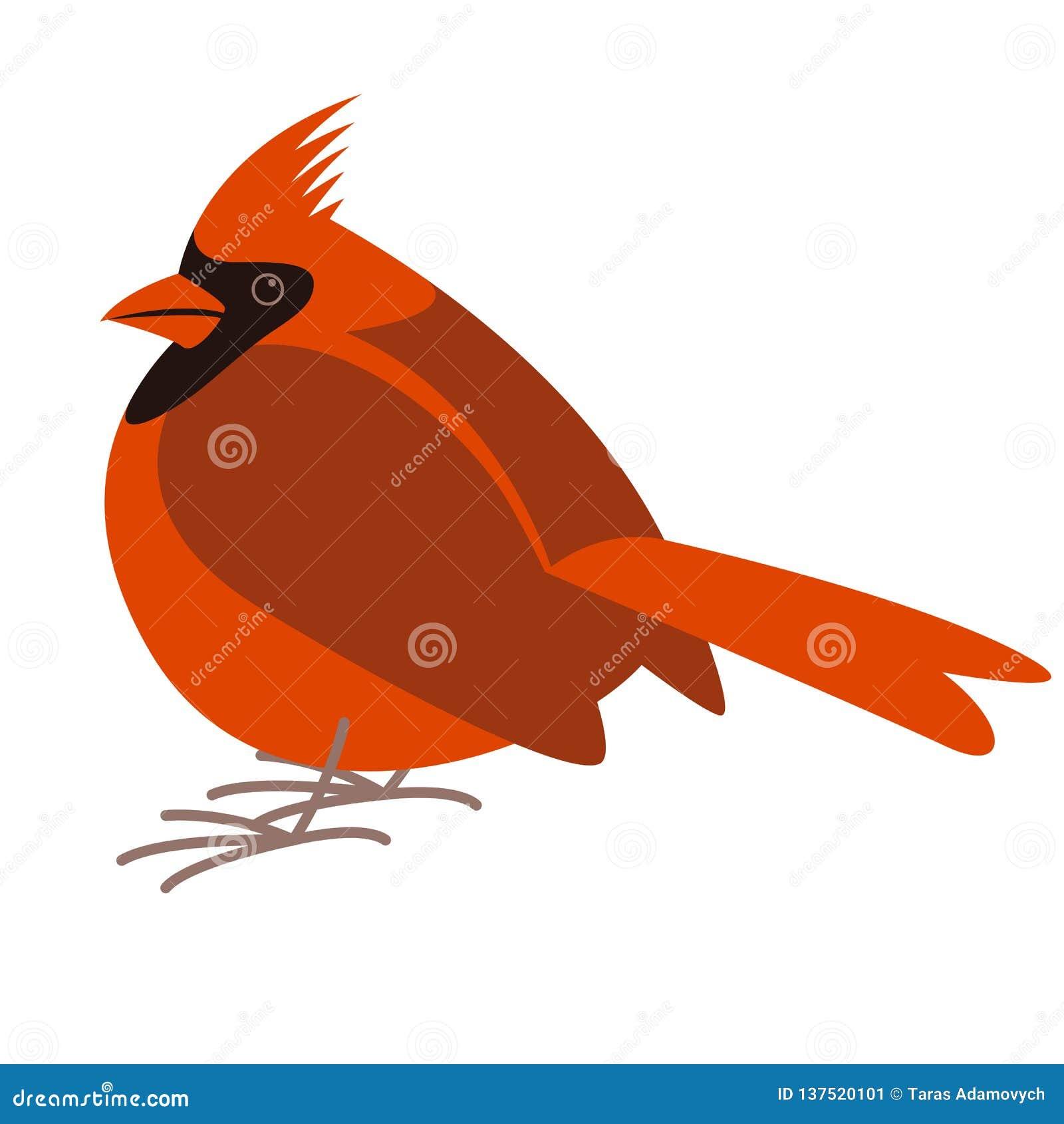 主要鸟,传染媒介例证,平的样式,外形