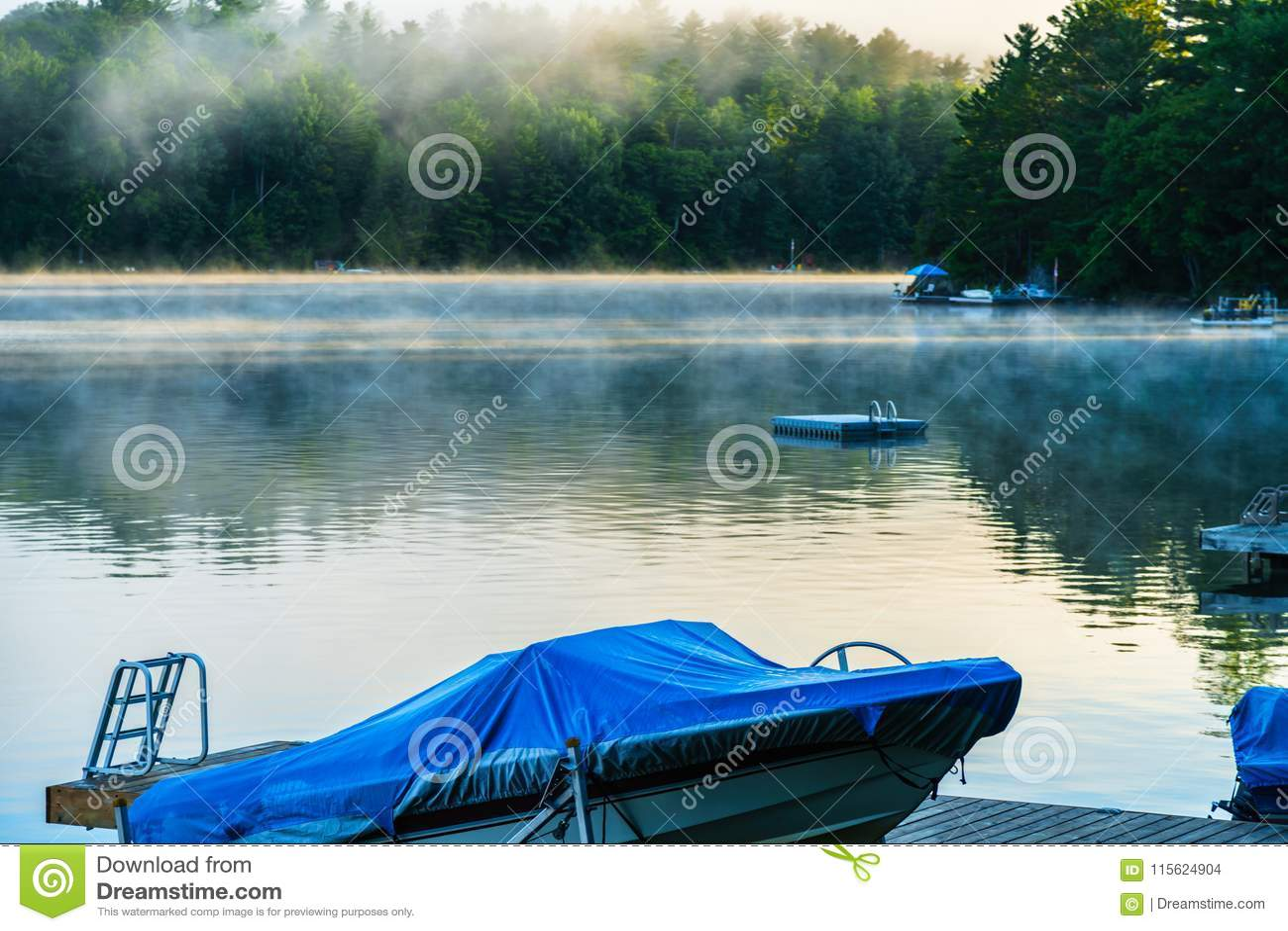 举从湖的清早薄雾作为在的日出