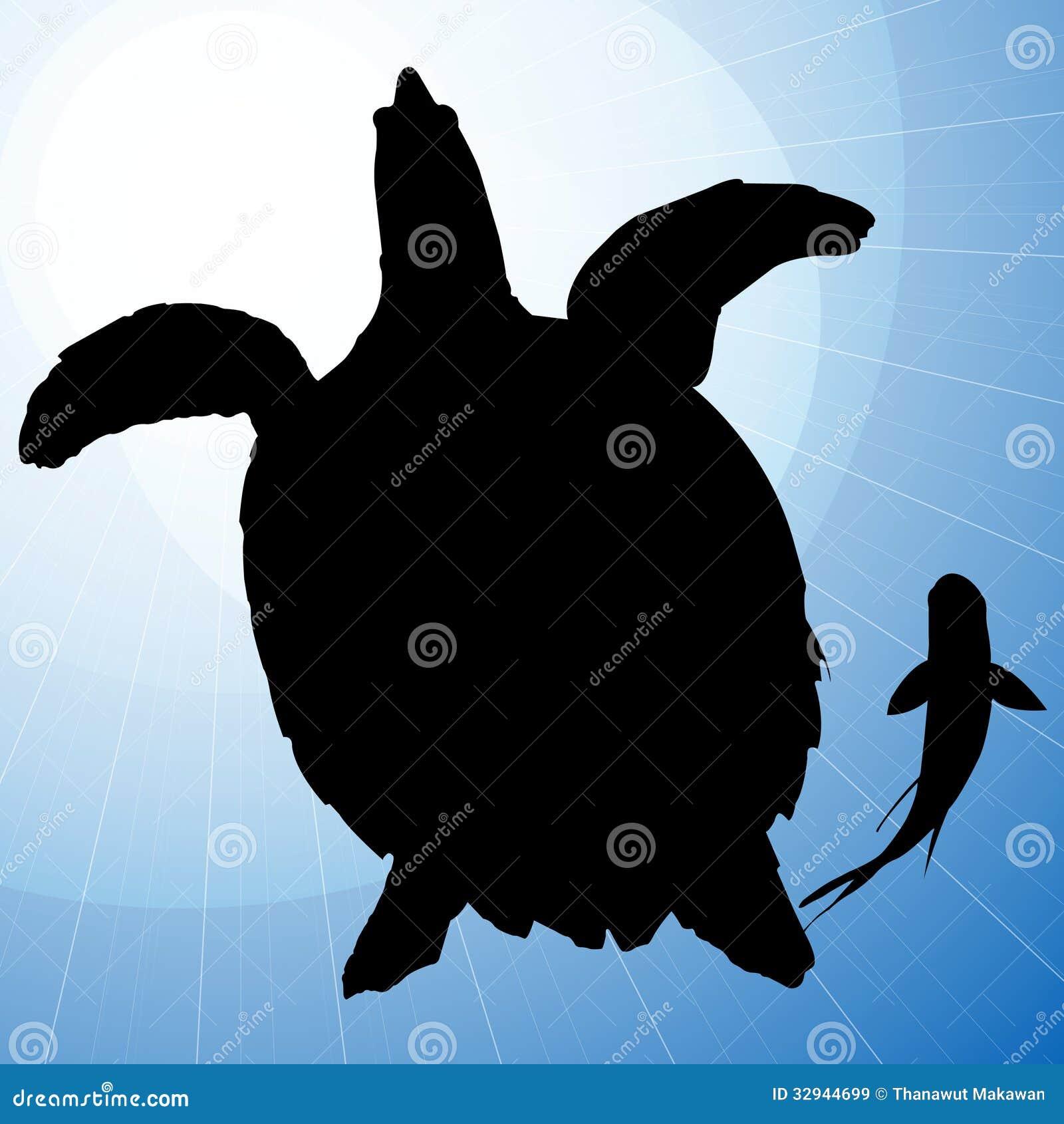 乌龟与鱼的传染媒介剪影在蓝色背景.图片