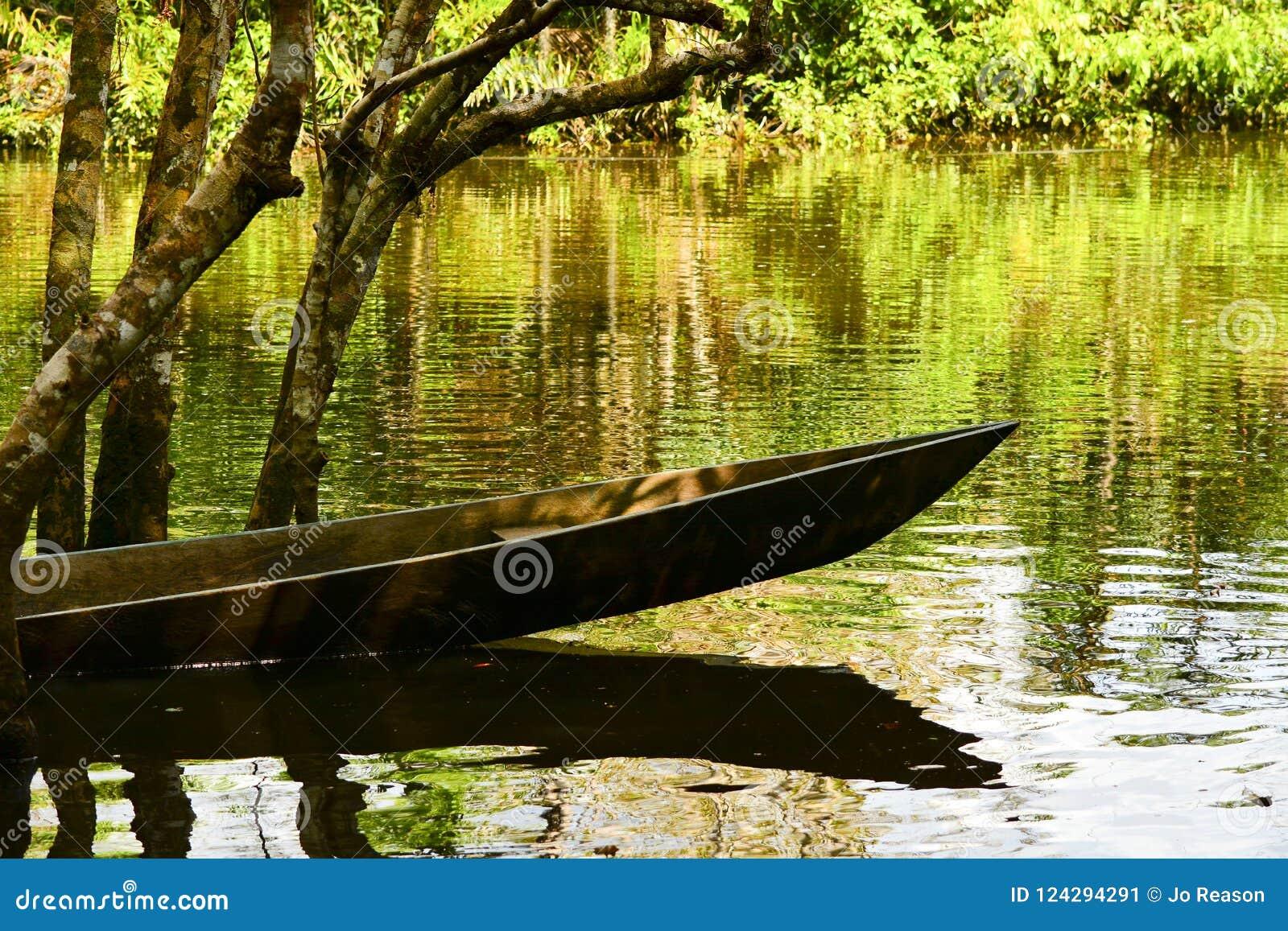 乘独木舟在水在Yasuni公园,厄瓜多尔
