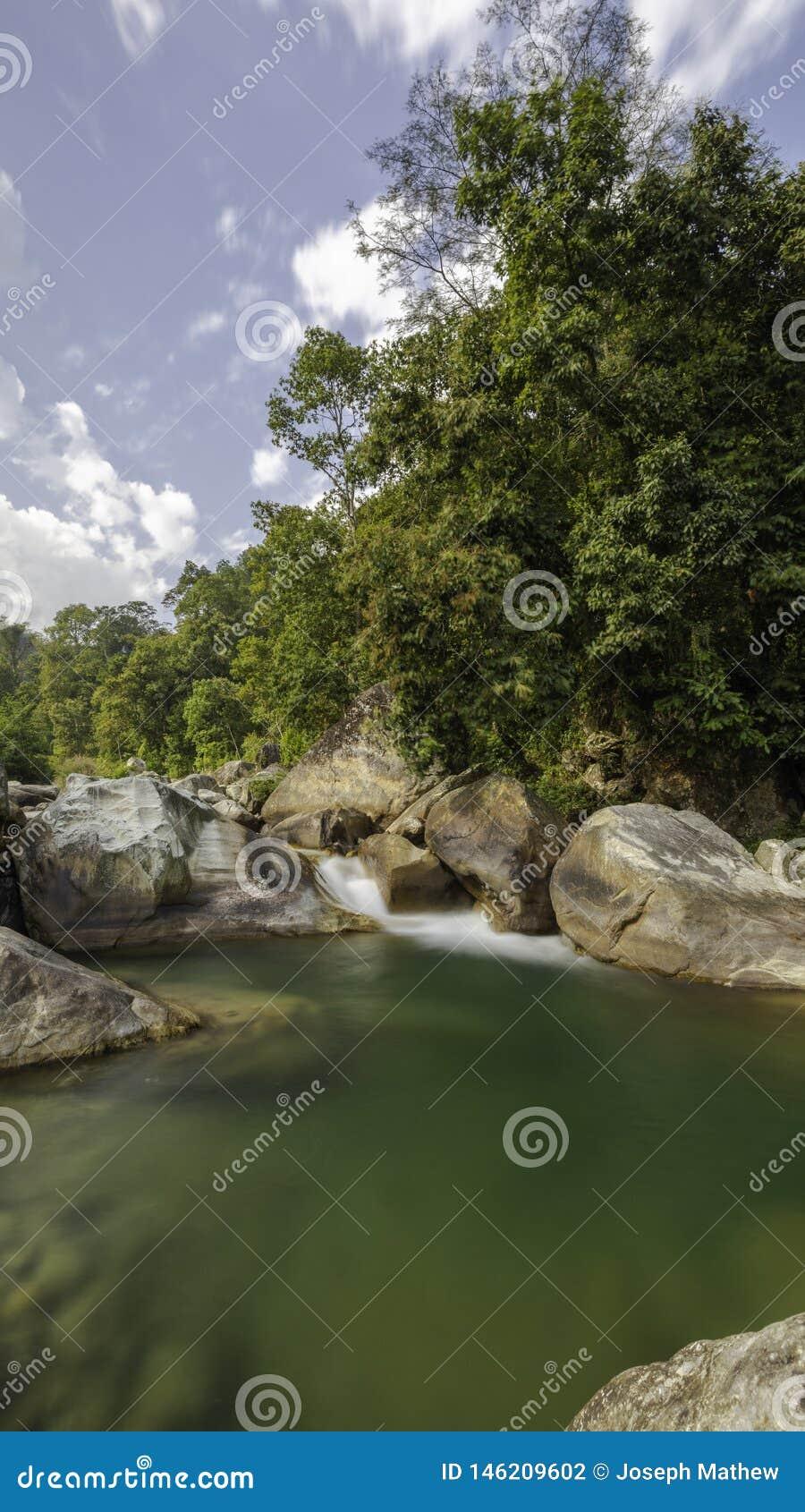 乡下河和树在农村