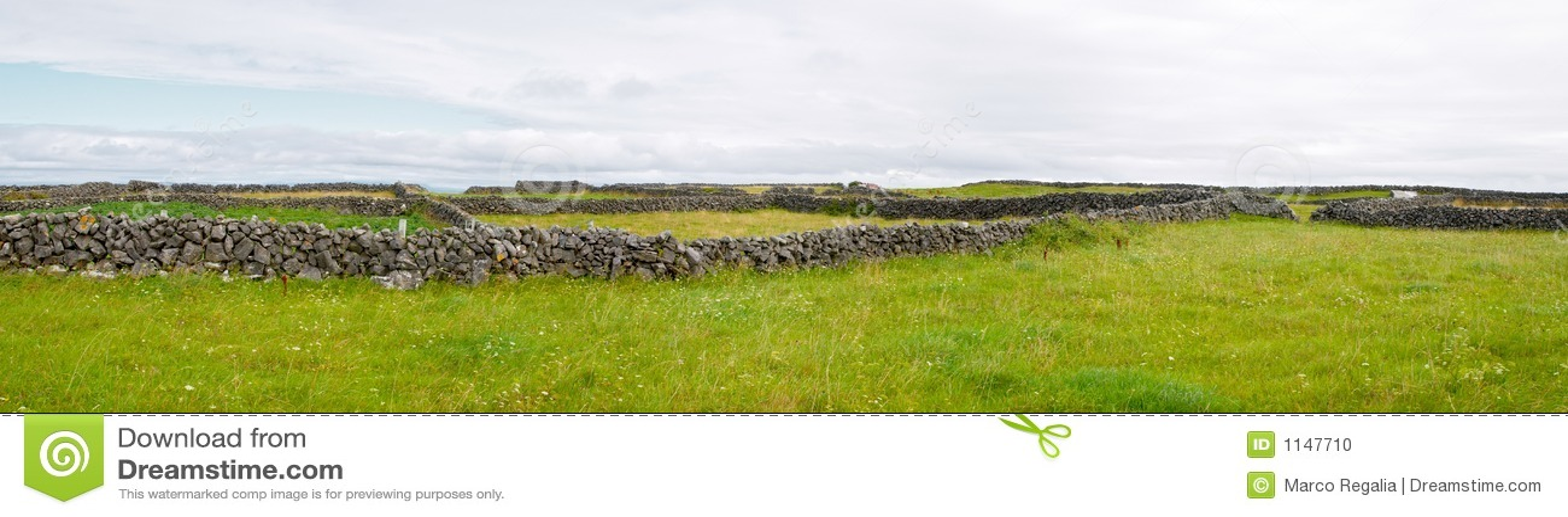 乡下爱尔兰语