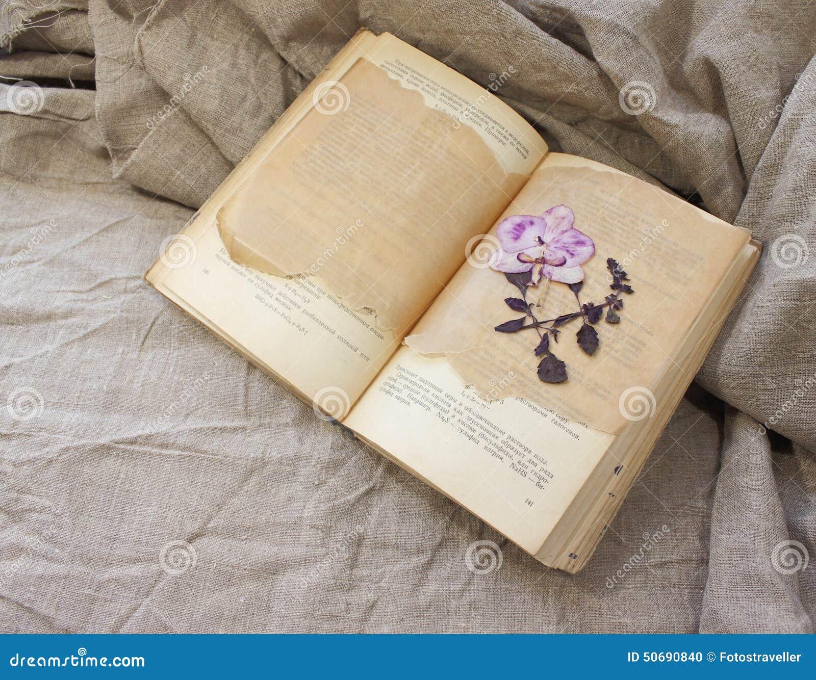 Download 书的干燥标本集 库存照片. 图片 包括有 精确度, 自治权, 非常好, 时间, 生活, 钉书匠, 过去, 仍然 - 50690840