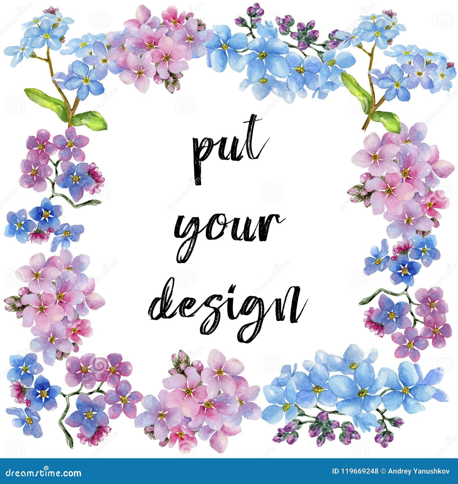 五颜六色的勿忘我草 花卉植物的花 框架边界装饰品正方形