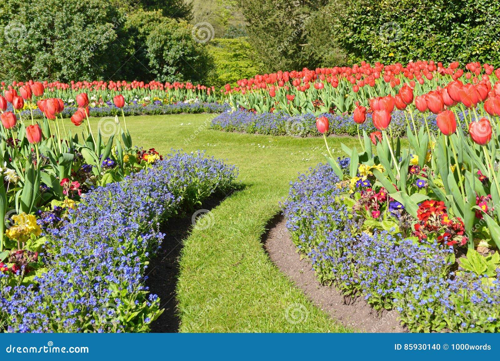 五颜六色的花和草坪路在一个规则式园林里
