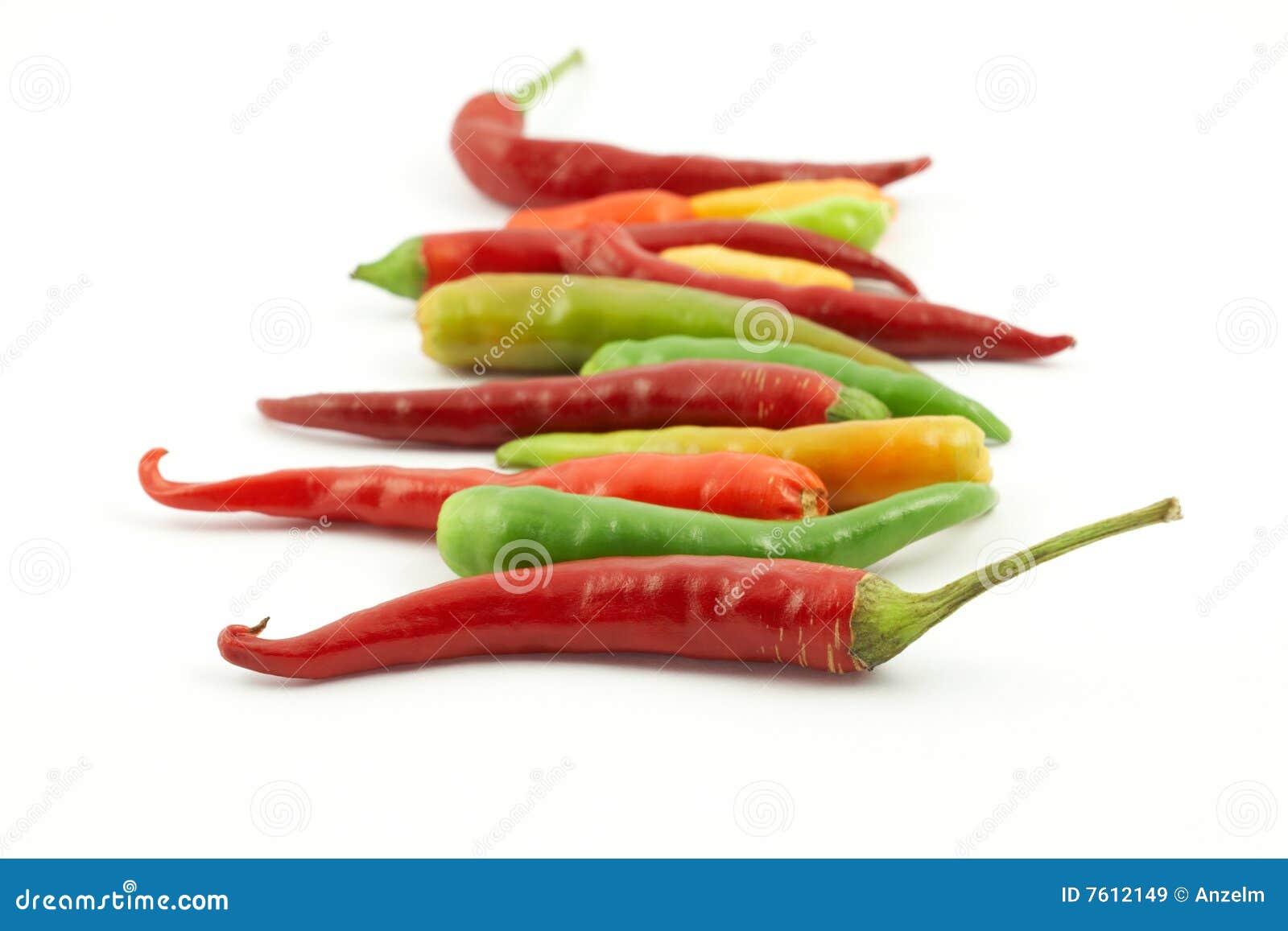 五颜六色的辣椒行