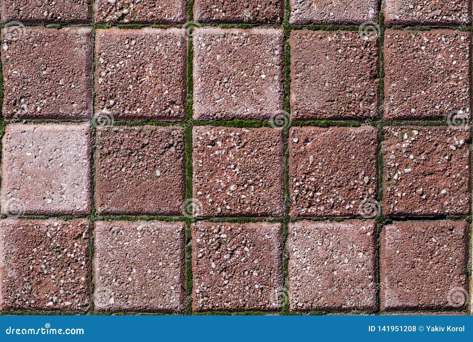 五颜六色的铺路板,边路瓦片背景?路纹理马赛克 雅典,希腊