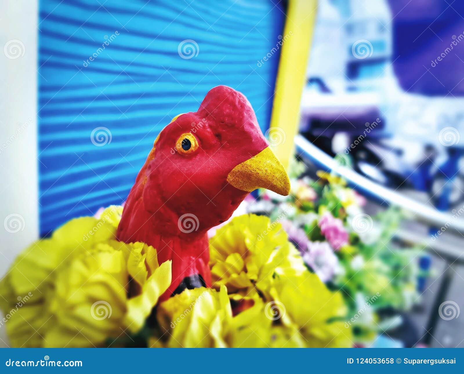五颜六色的鸡模型特写镜头头