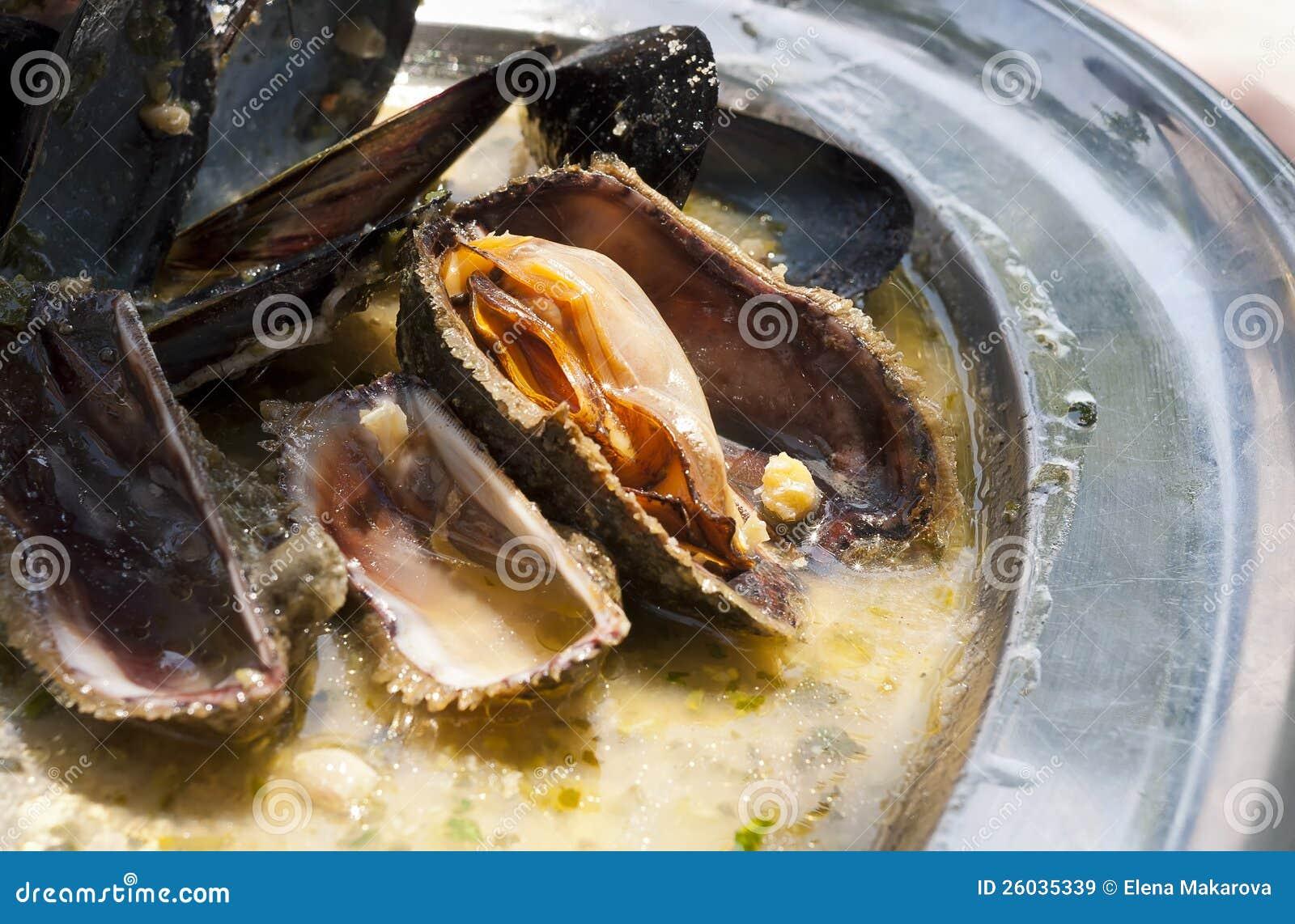 亚得里亚海的淡菜