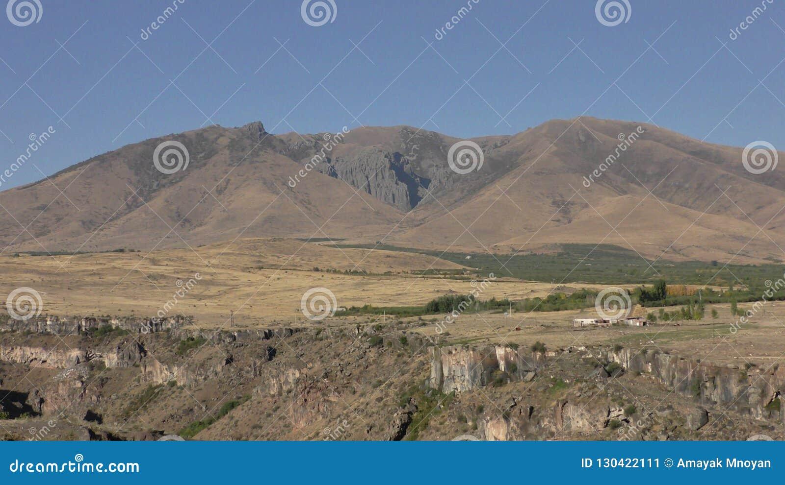 亚美尼亚,阿拉加措特恩省省 领域的秋天颜色在Aramoun附近的