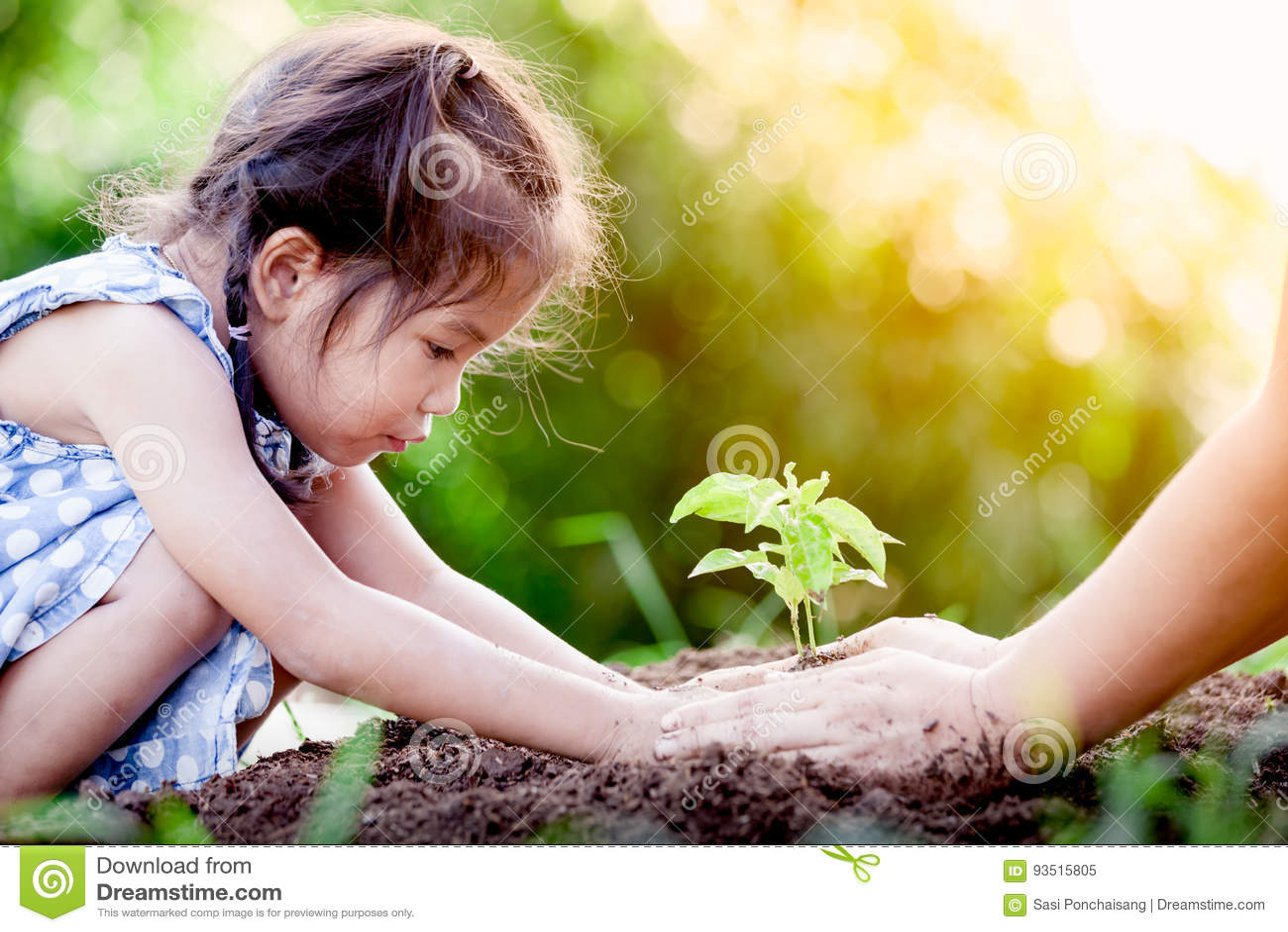 亚裔种植在黑土壤的小女孩和父母年轻树