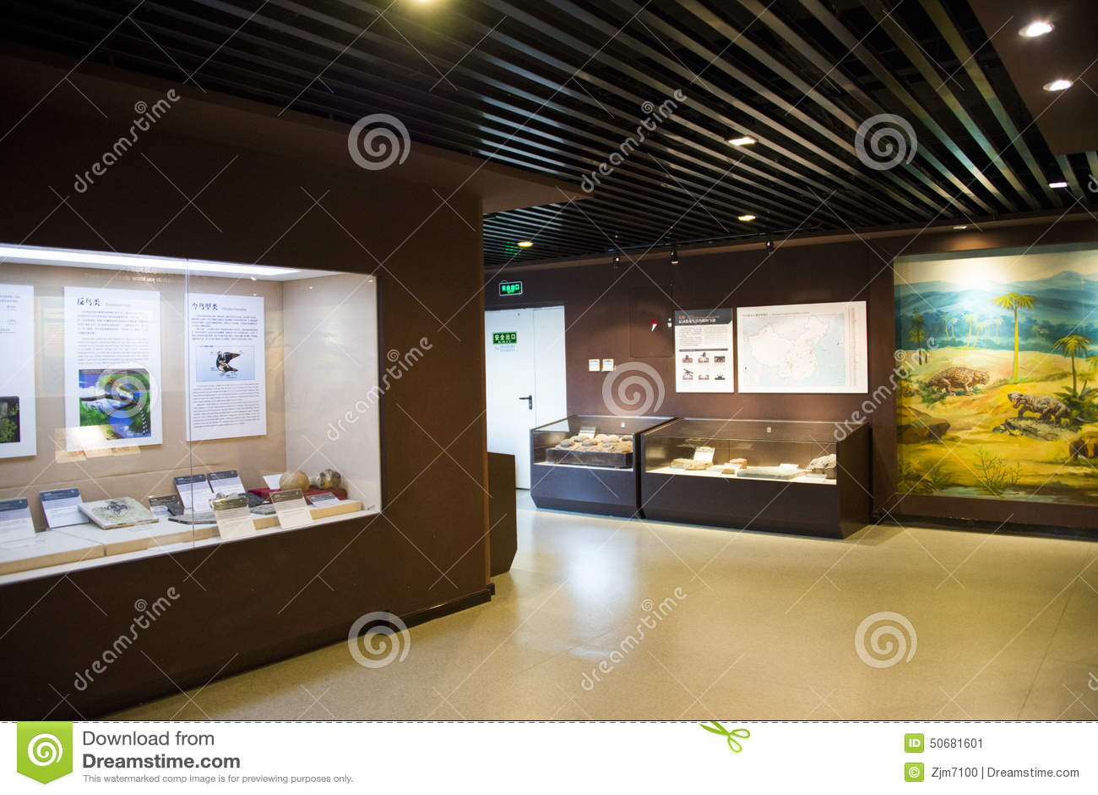 Download 亚洲人中国,北京,古老animalï ¼ ŒIndoor展览室博物馆, 编辑类照片 - 图片 包括有 脊椎动物, 旁观者: 50681601