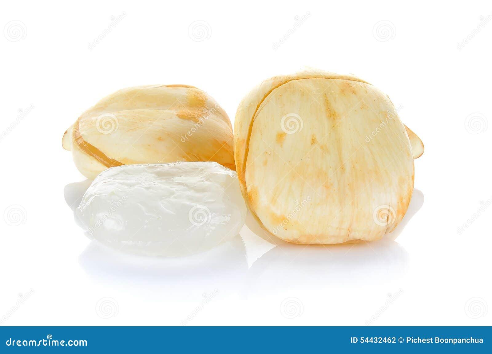 亚洲扇叶树头榈棕榈,棕榈汁,在白色bac隔绝的桄榔