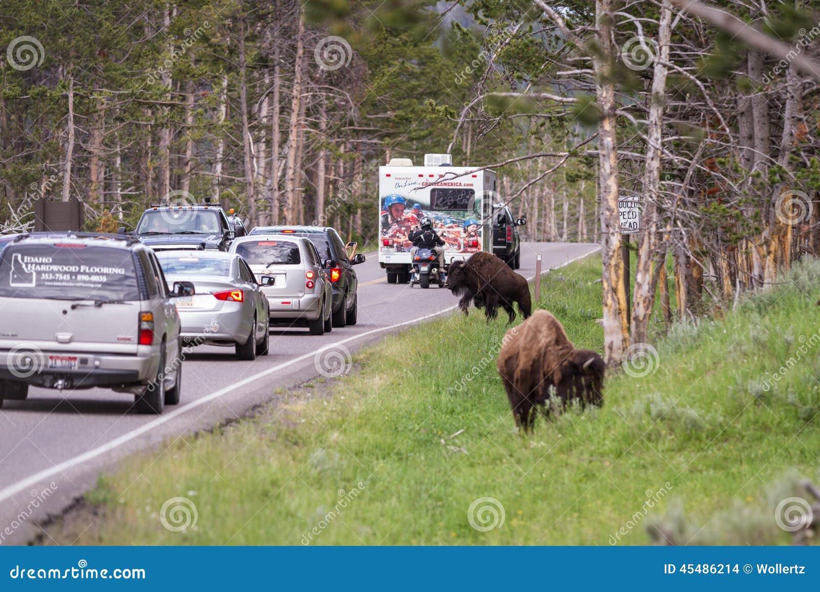 交通堵塞在黄石