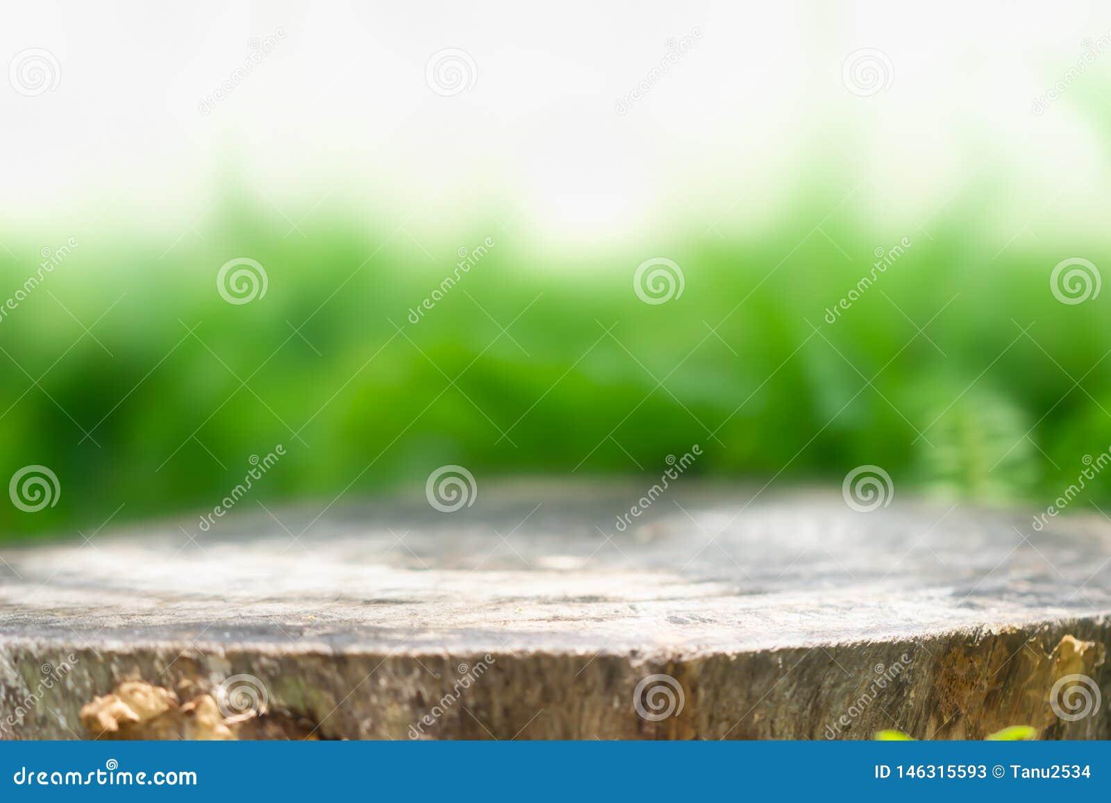 产品显示蒙太奇的树桩 r