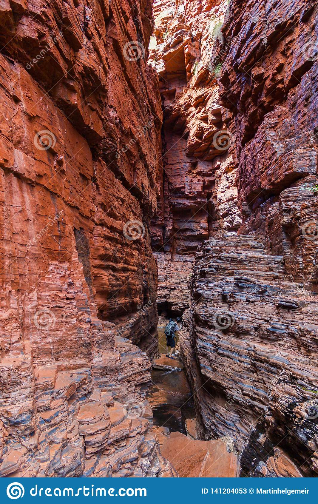 享受扶手栏杆水池,Weano峡谷,卡瑞吉尼国家公园,澳大利亚西部的看法的年轻人