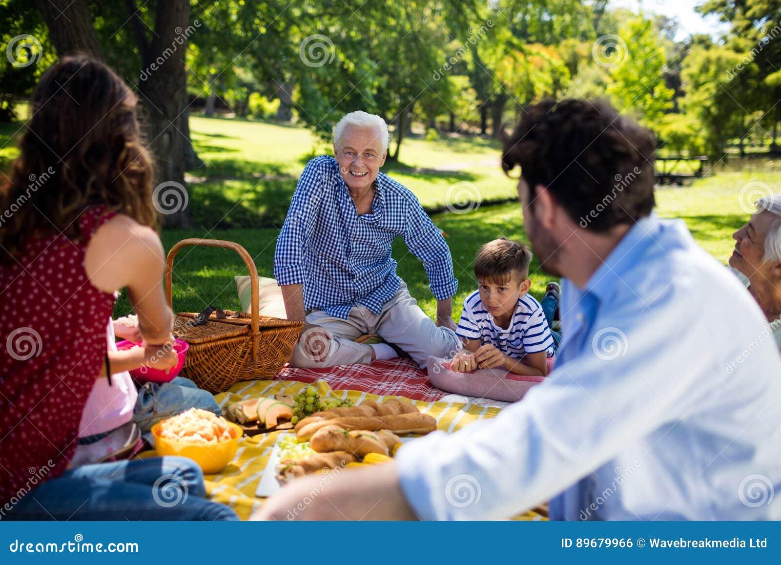 享受野餐的多一代家庭在公园