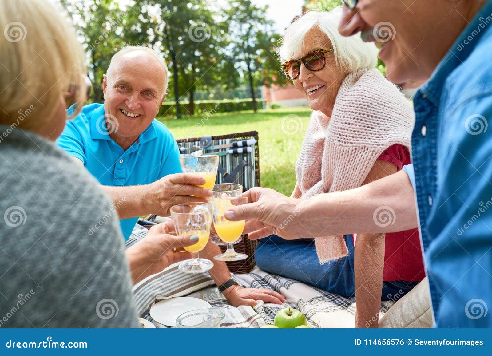 享受野餐的小组资深人民在公园