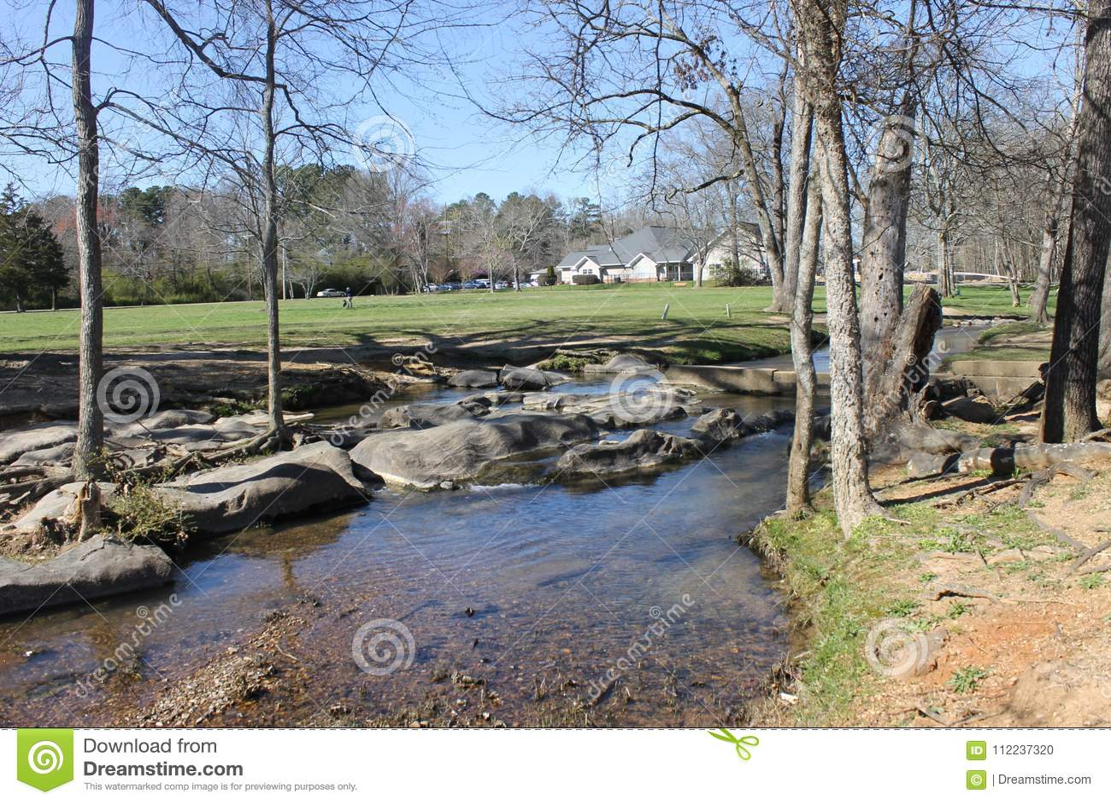 享用的河和晴天在公园