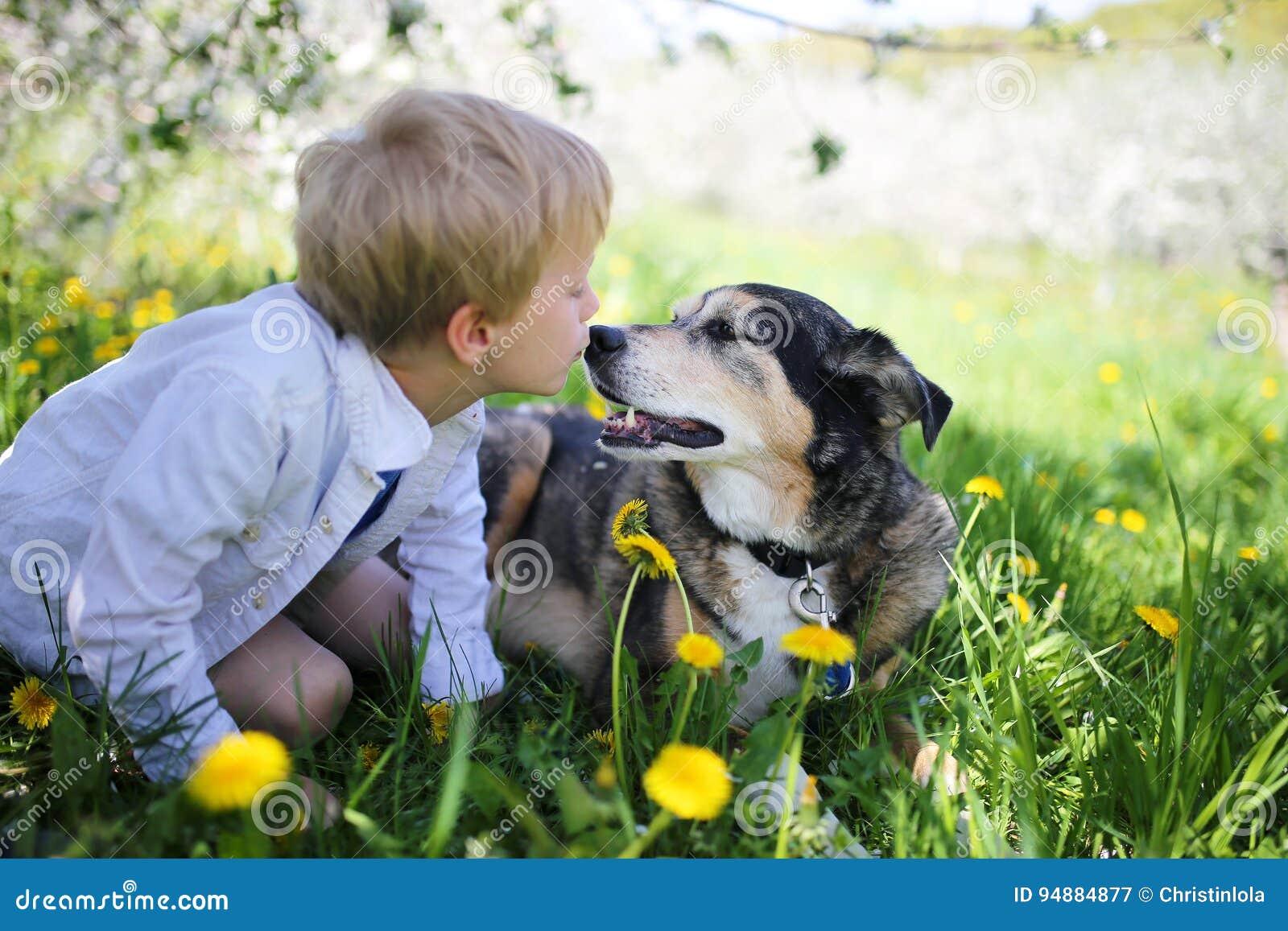 亲吻宠物德国牧羊犬狗外面在花的幼儿我