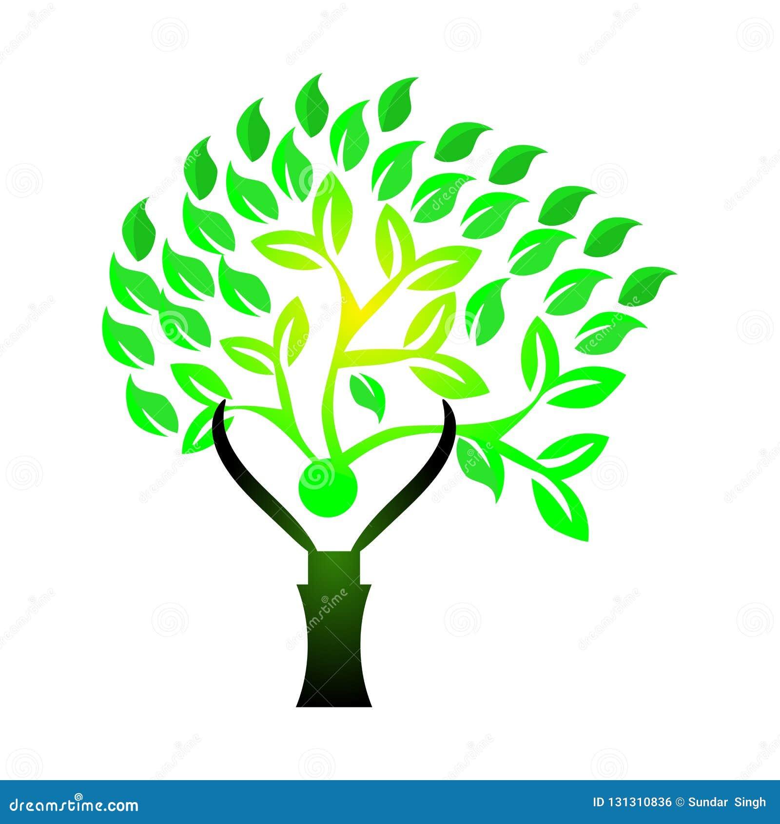 人与根的爱护树木