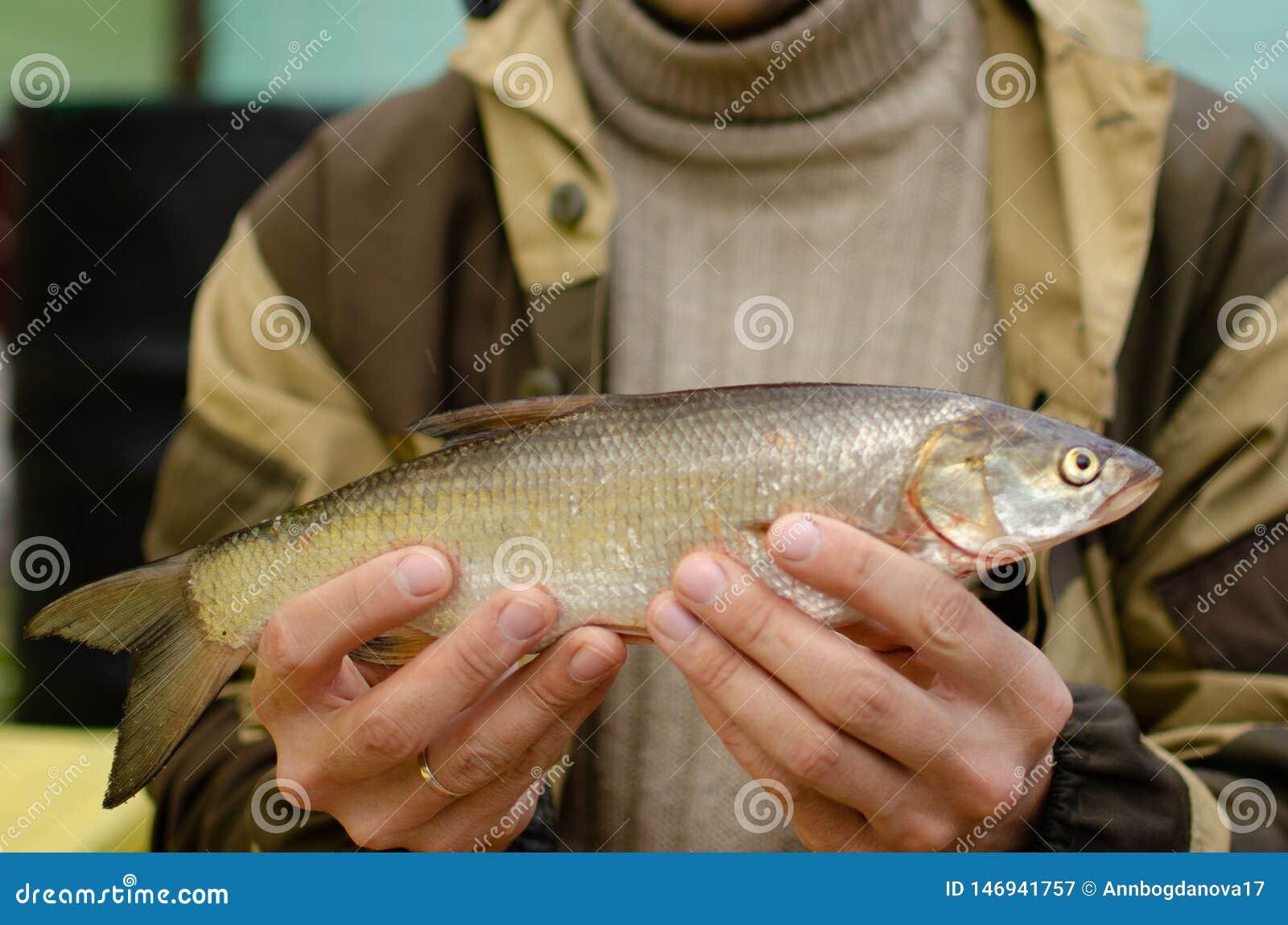 人举行在他的手上抓了鱼