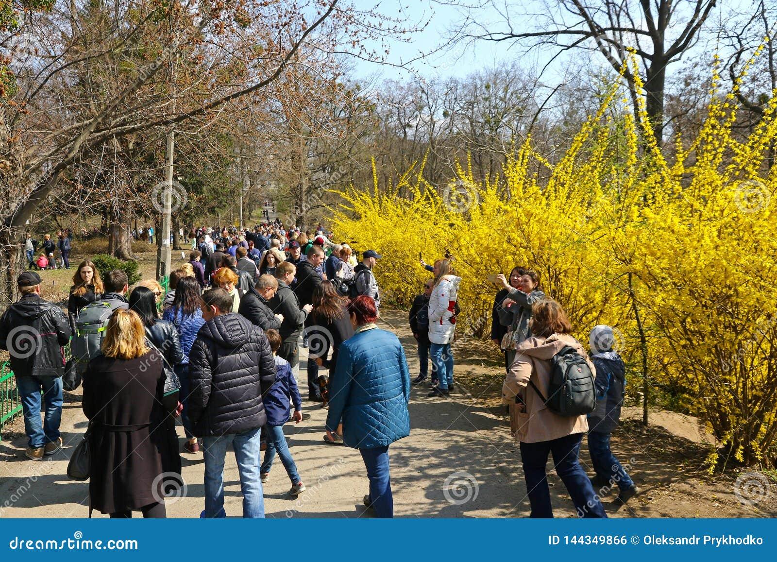 人们在植物园享受晴朗的星期天在基辅