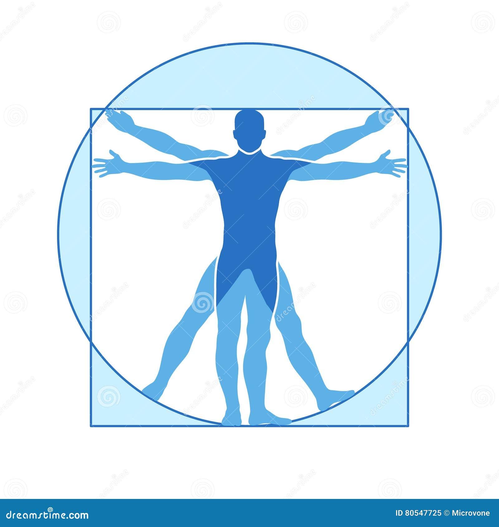 人体vitruvian人传染媒介象