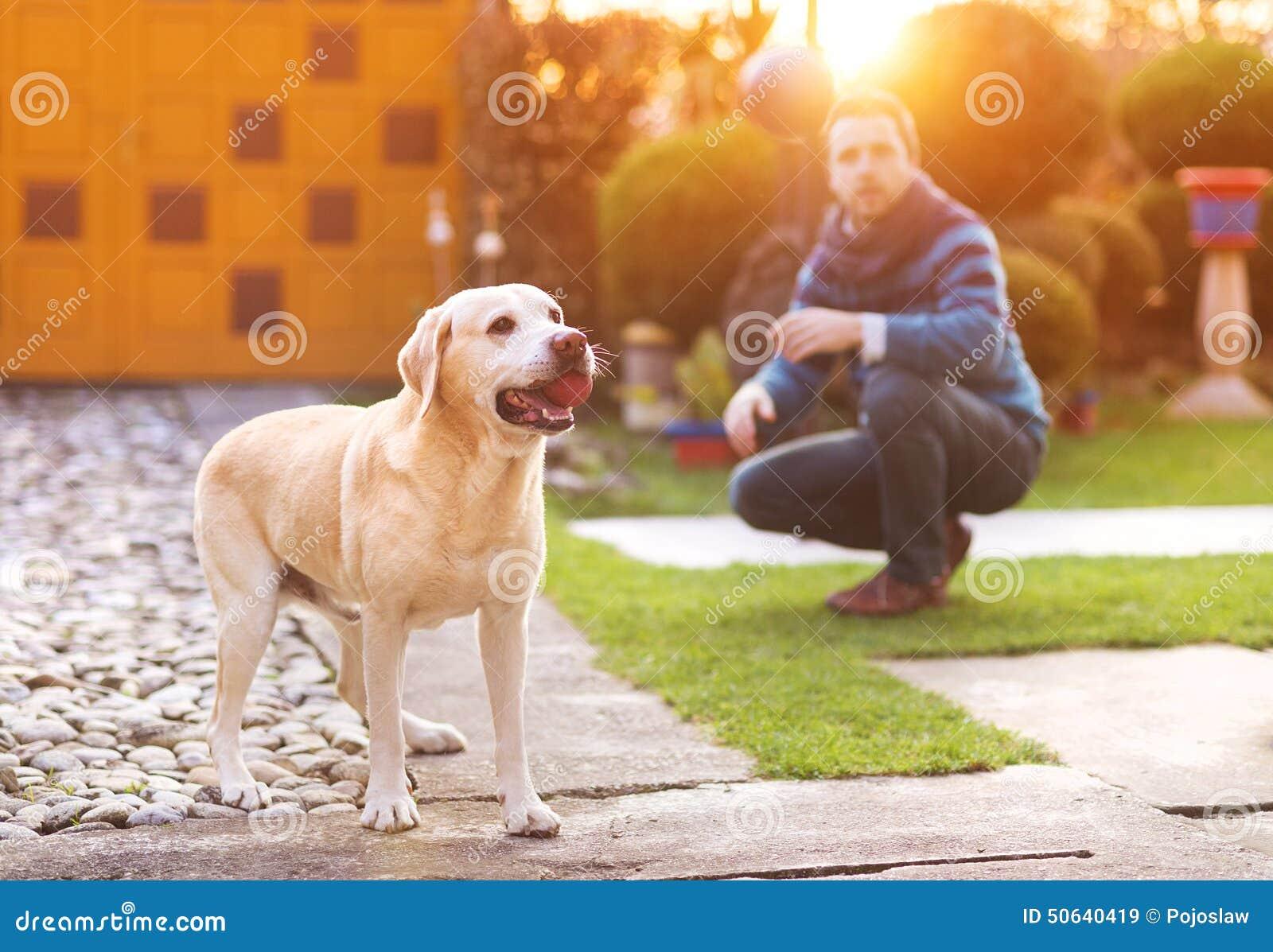 人和狗性交色情片_人和狗 库存照片 - 图片: 50640419